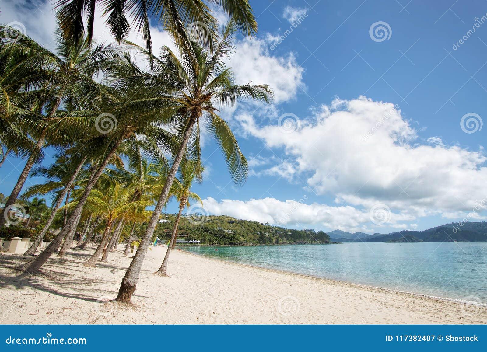 Catseye Beach, Hamilton Island. Australia Stock Image ...