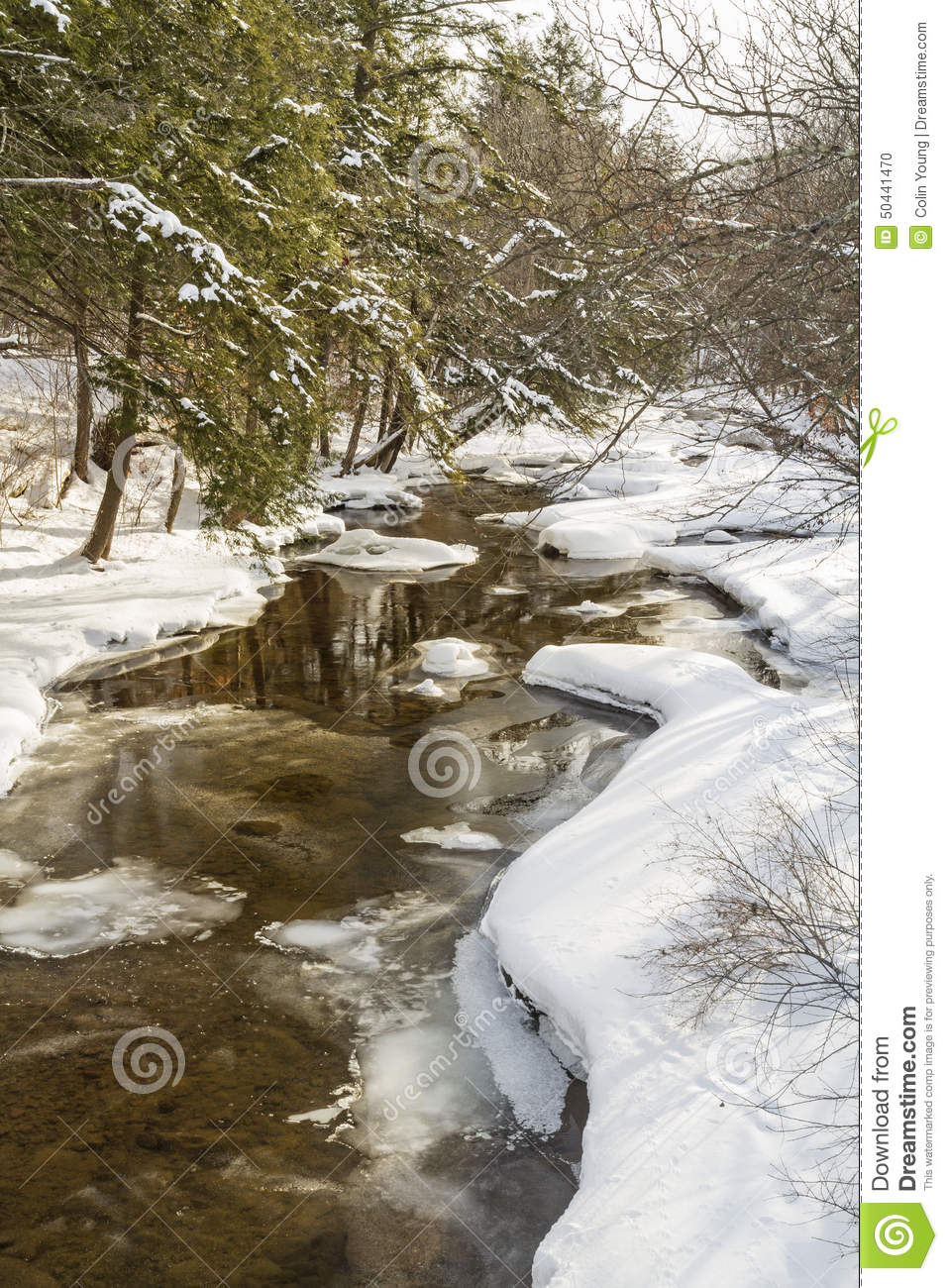 Catskills Winter Stream Reflections Stock Photo