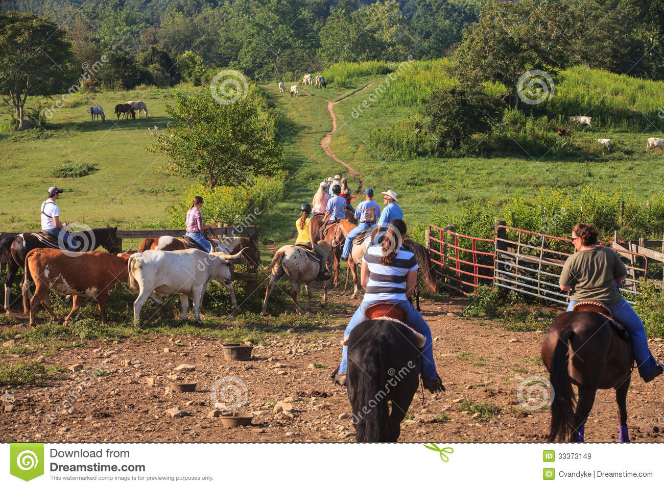 Cattle Drive Marriott Ranch in Virginia