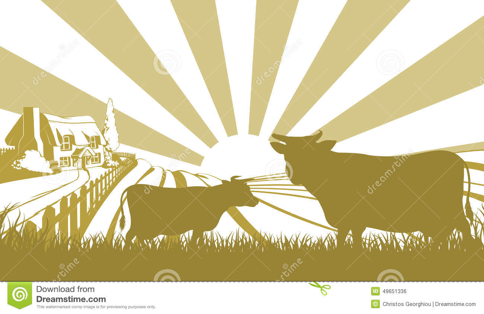 Farm Style House Plans Cattle Farm Scene Stock Vector Image 49651336