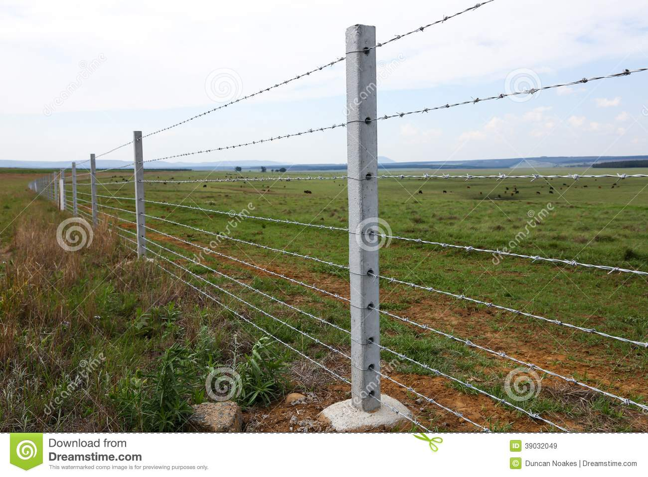 Farm fence with concrete fencing posts and barbed wire strands.