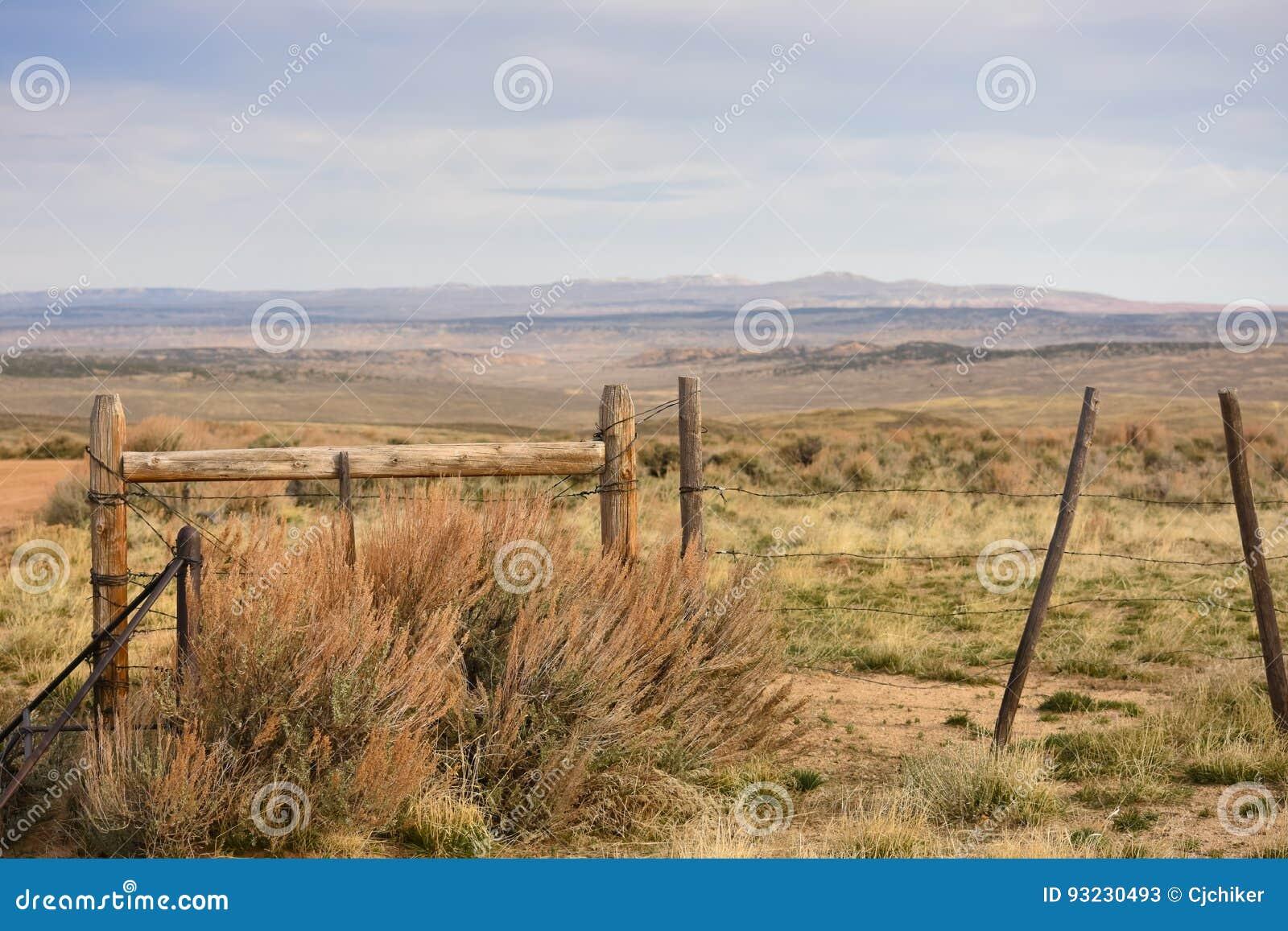 Cattleguard och staket Western Scene