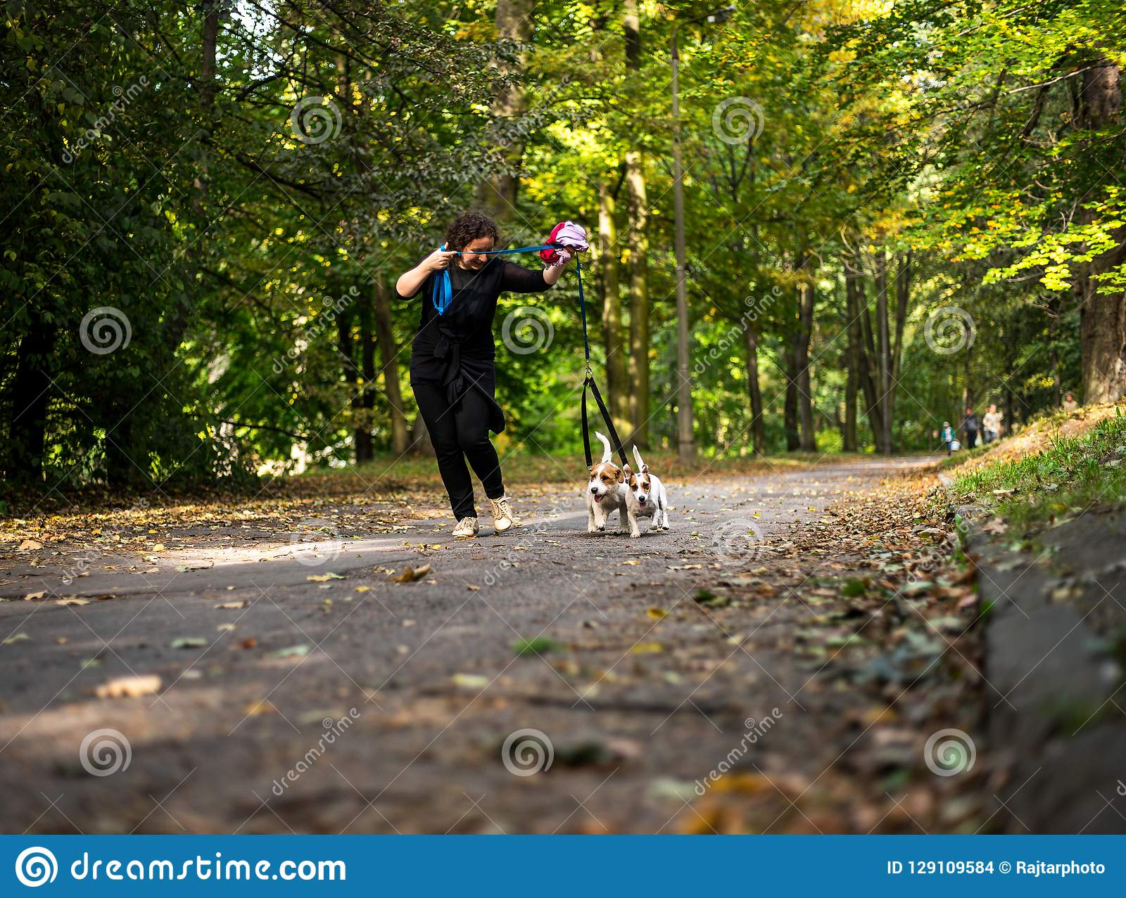 Caucasian women running around the autumn park with the dogs.