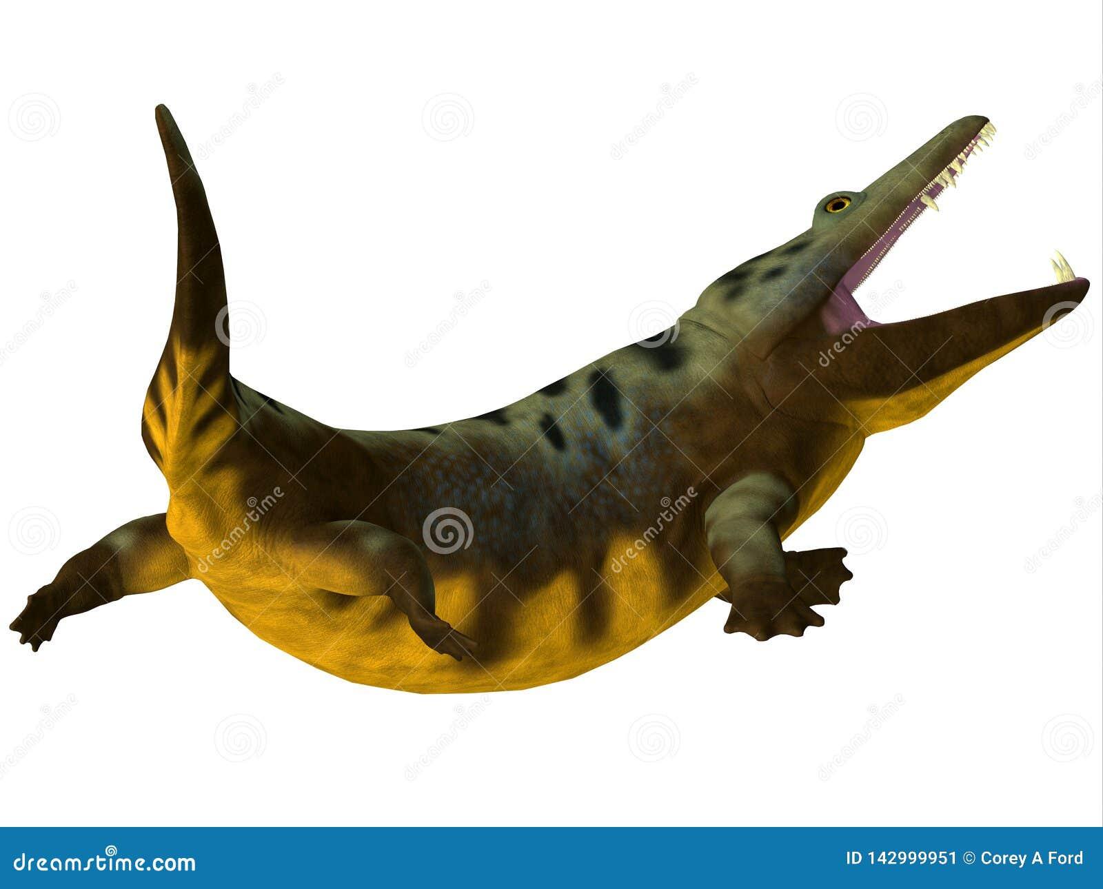 Cauda anfíbia de Mastodonsaurus