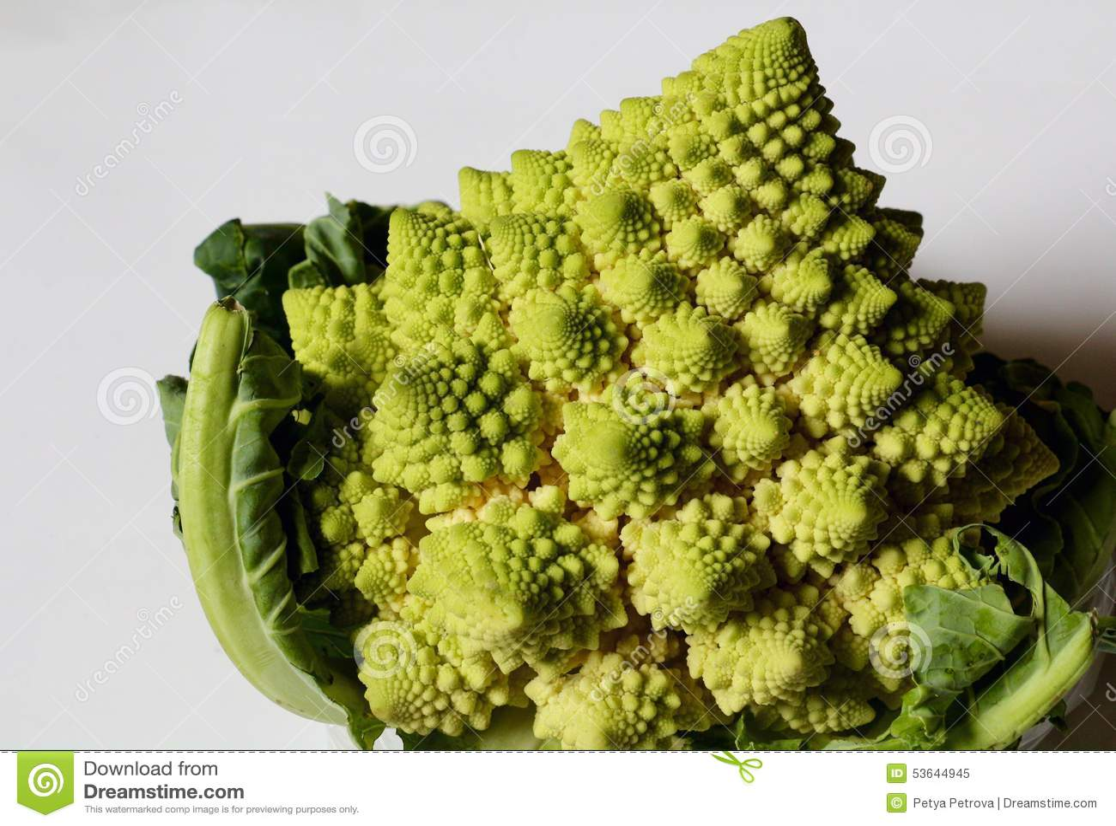 Cauliflower Romanesco Broccoli Plant Stock Image Image Of Light
