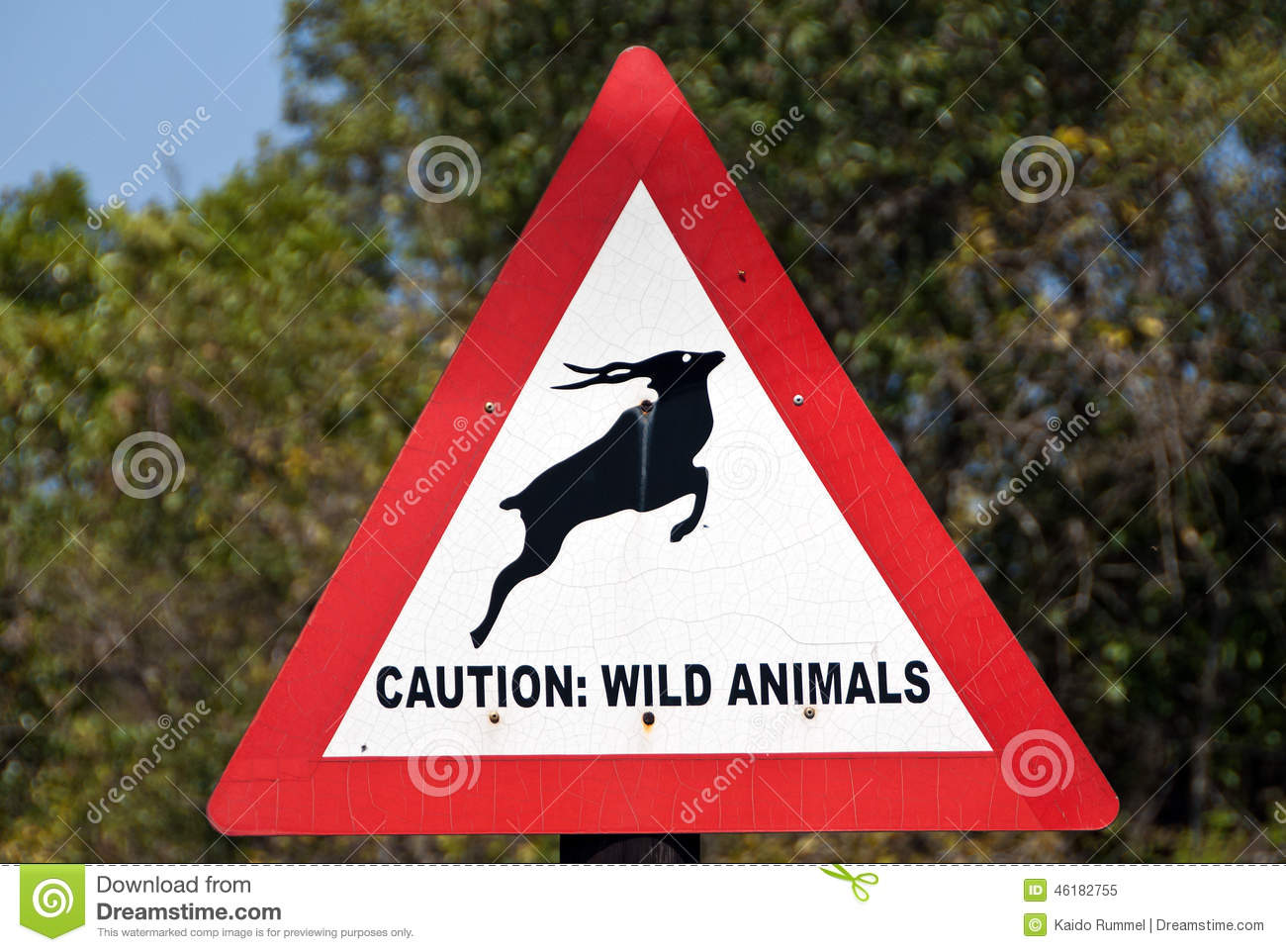 animals wild caution sign africa south preview