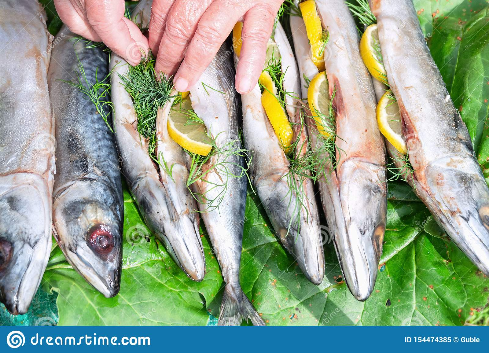Cavala dos peixes enchida com o limão e o aneto para cozinhar o ar livre