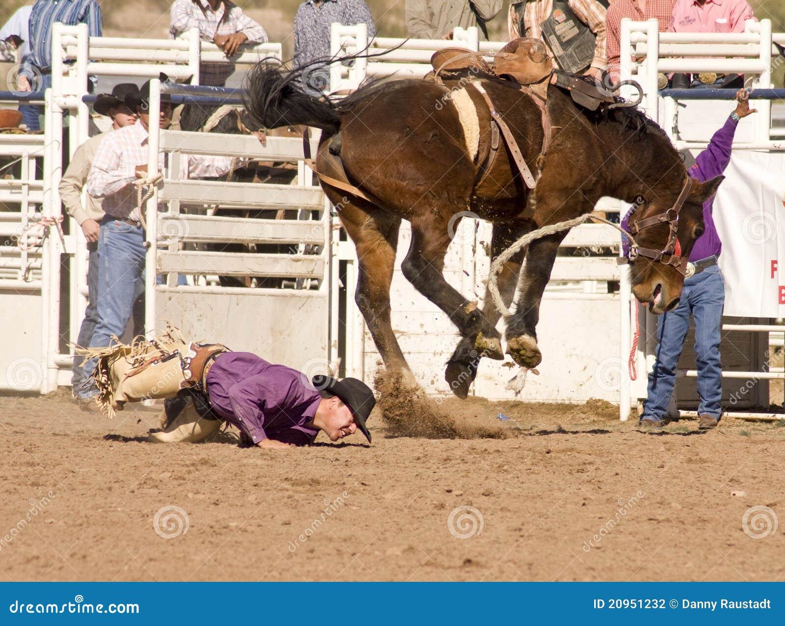Cavaleiro Bucking do Bronc do rodeio