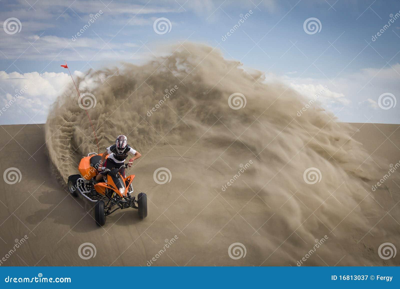 Cavaleiro do quadrilátero na capoeira das dunas de areia