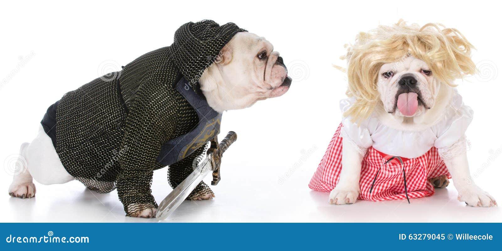 Cavaleiro e donzela