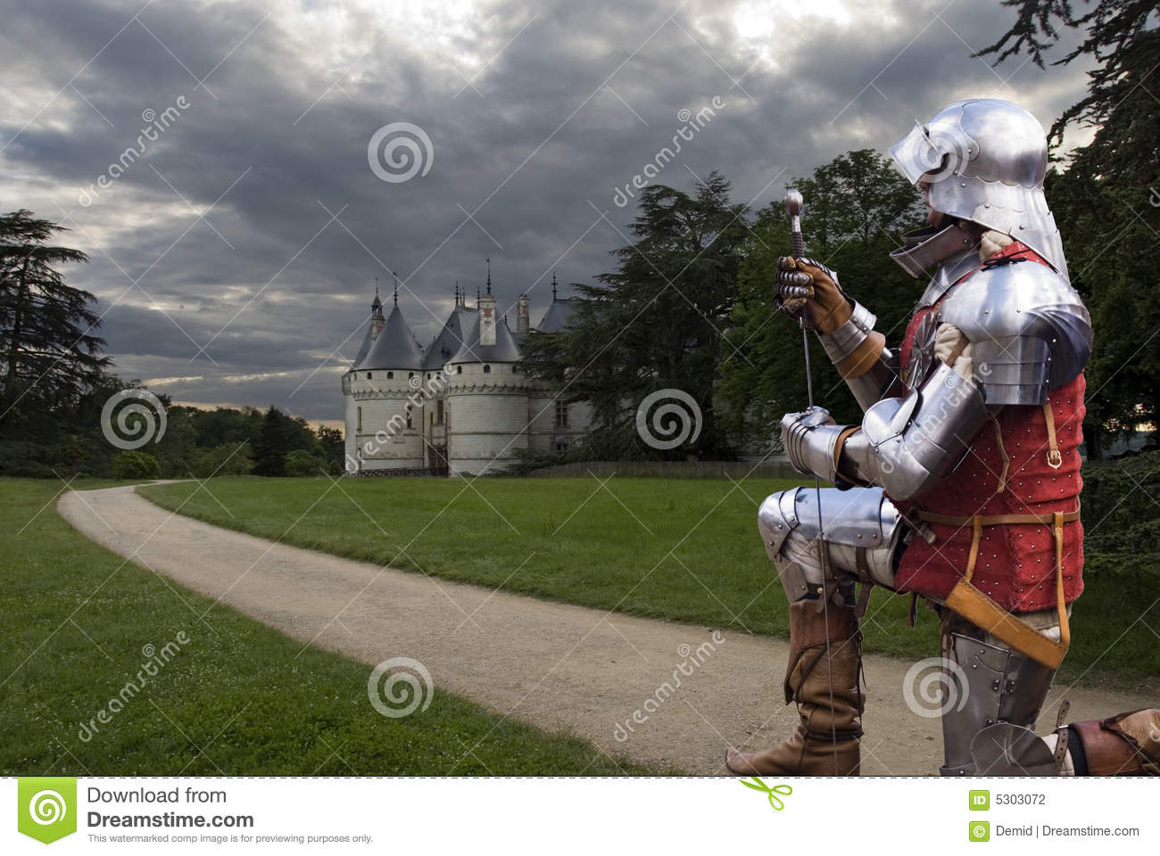 Download Cavaliere Da Chateau Chaumont Fotografia Stock - Immagine di chateau, coltura: 5303072