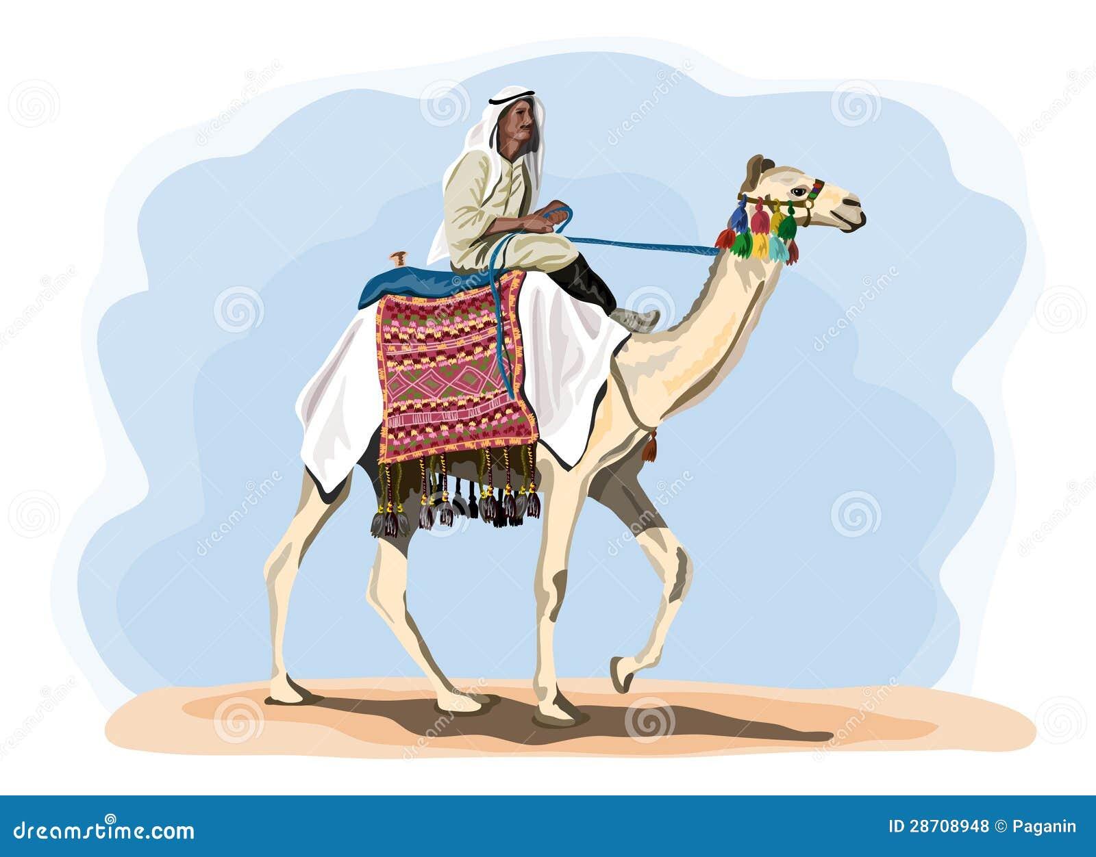 Cavaliere egiziano del cammello in costume tradizionale - Cavaliere modello a colori ...