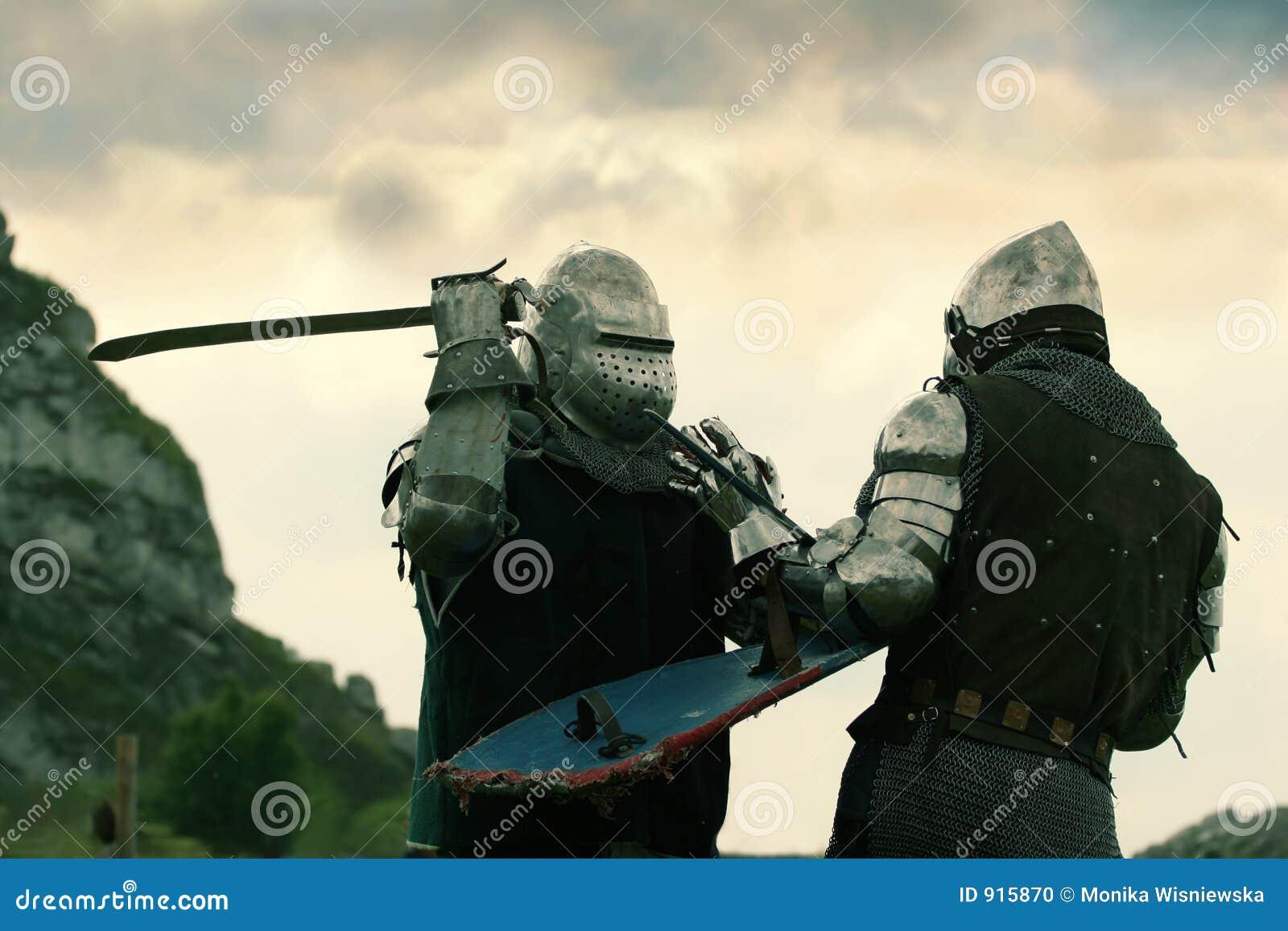 Cavalieri di combattimento