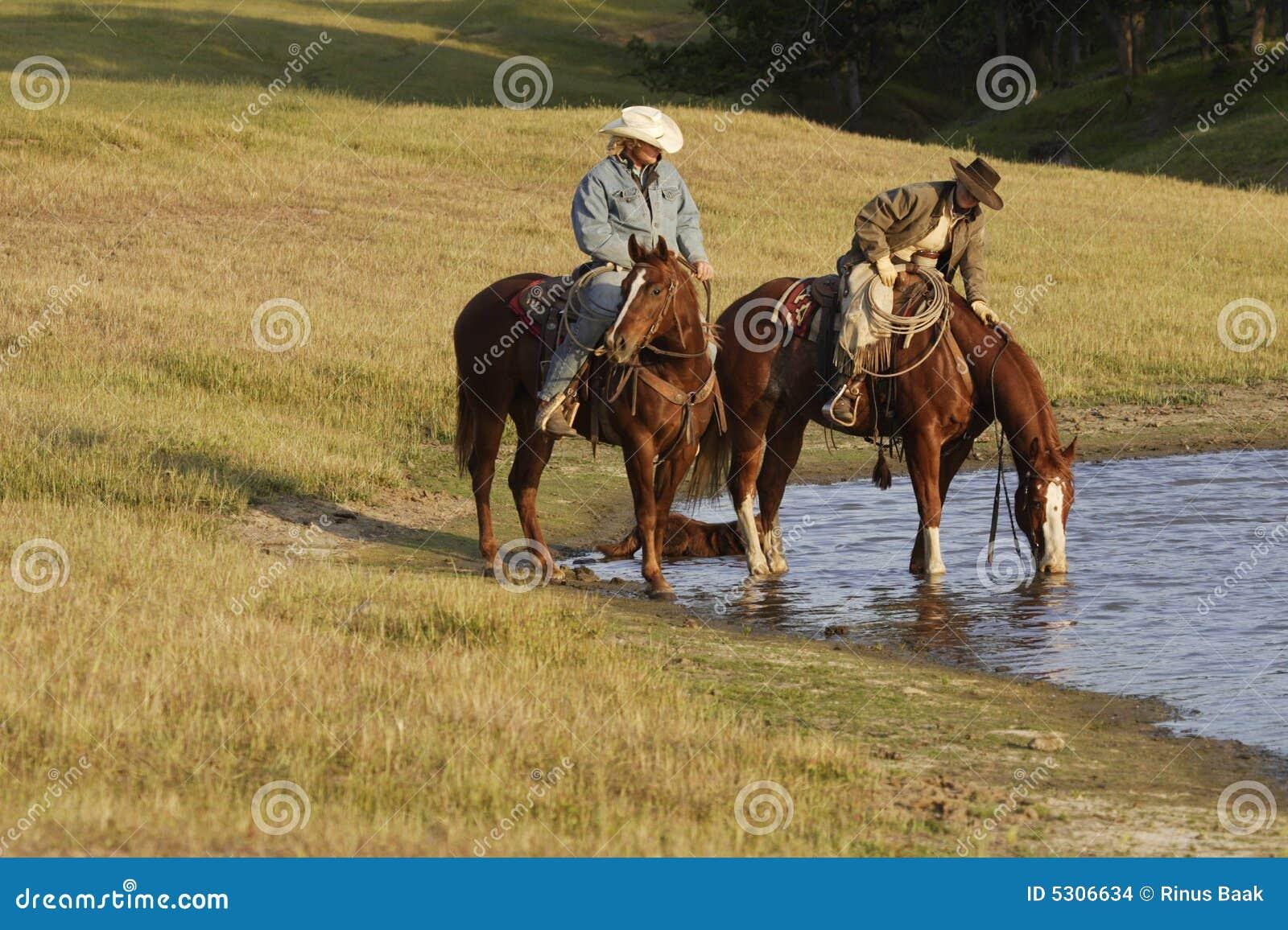 Download Cavalieri Di Horseback Al Foro Di Acqua Fotografia Stock - Immagine di prato, verde: 5306634