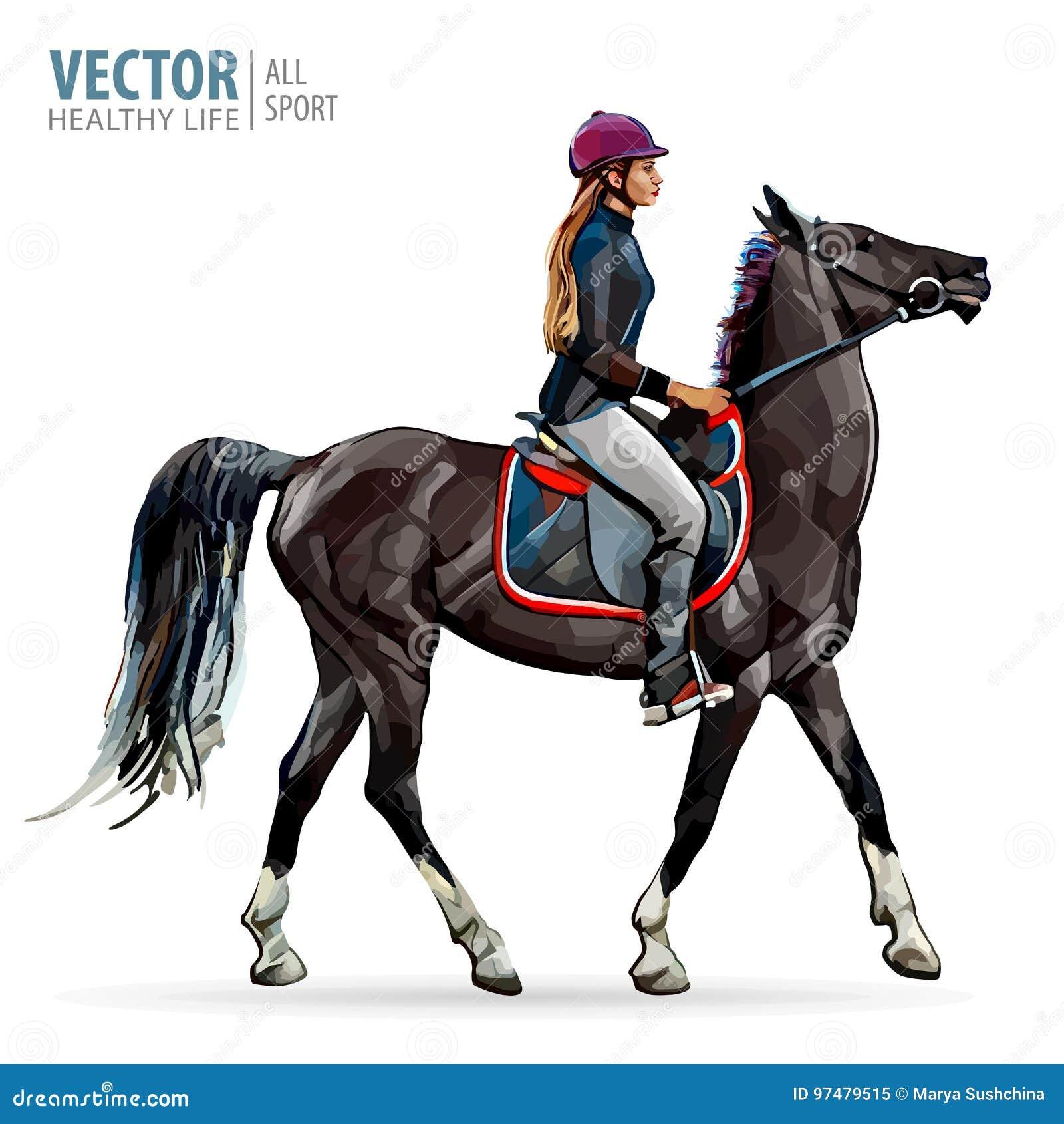 Cavallo con il cavaliere Puleggia tenditrice sul cavallo Corsa di cavalli Donna sul cavallo sport Illustrazione di vettore