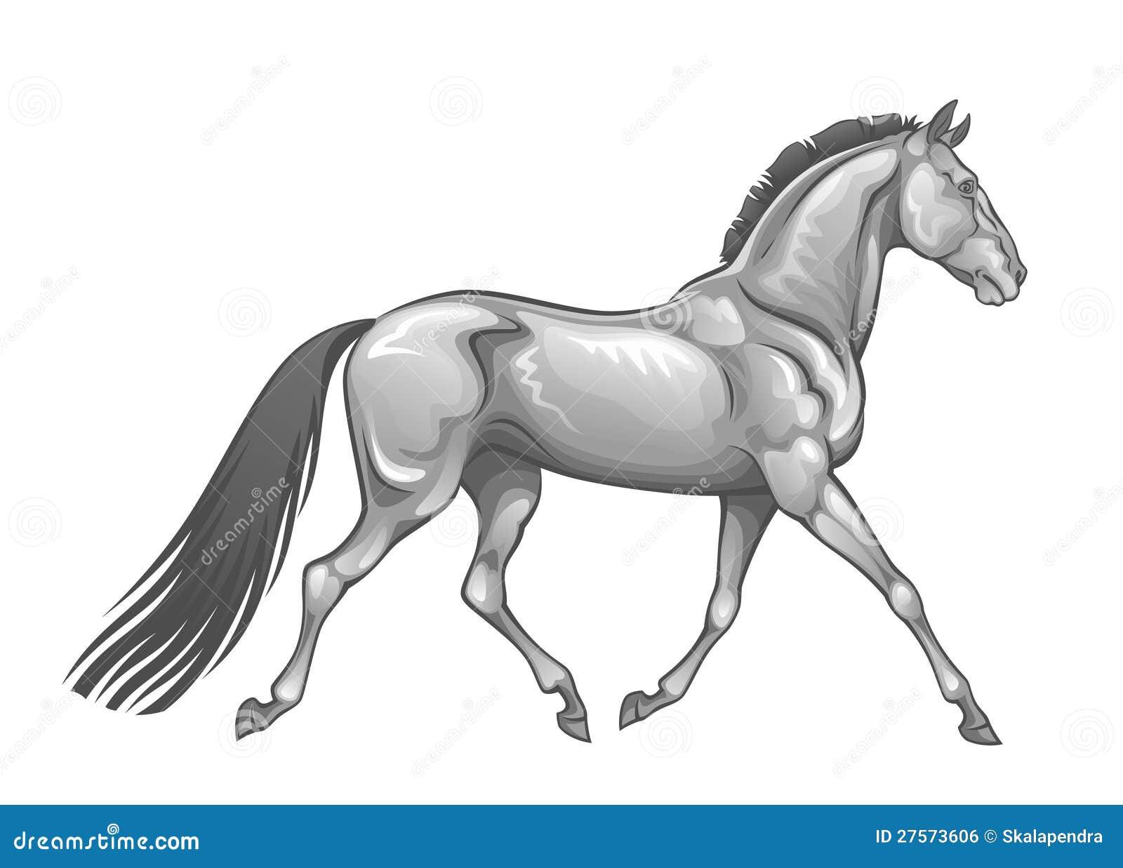Cavallo d argento