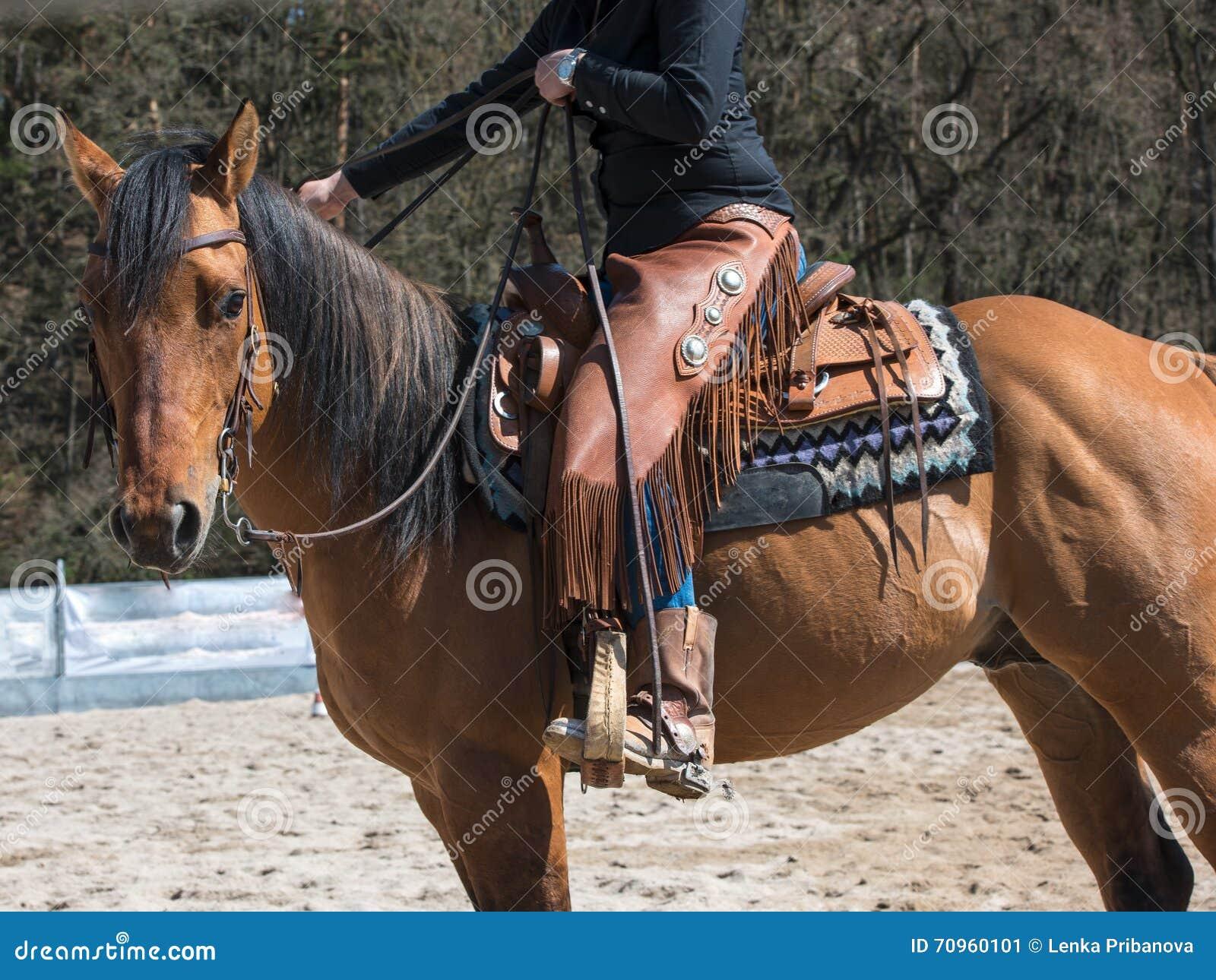 Rodeo A Cavallo.Cavallo Di Tha Con L Attrezzatura Del Rodeo Immagine Stock