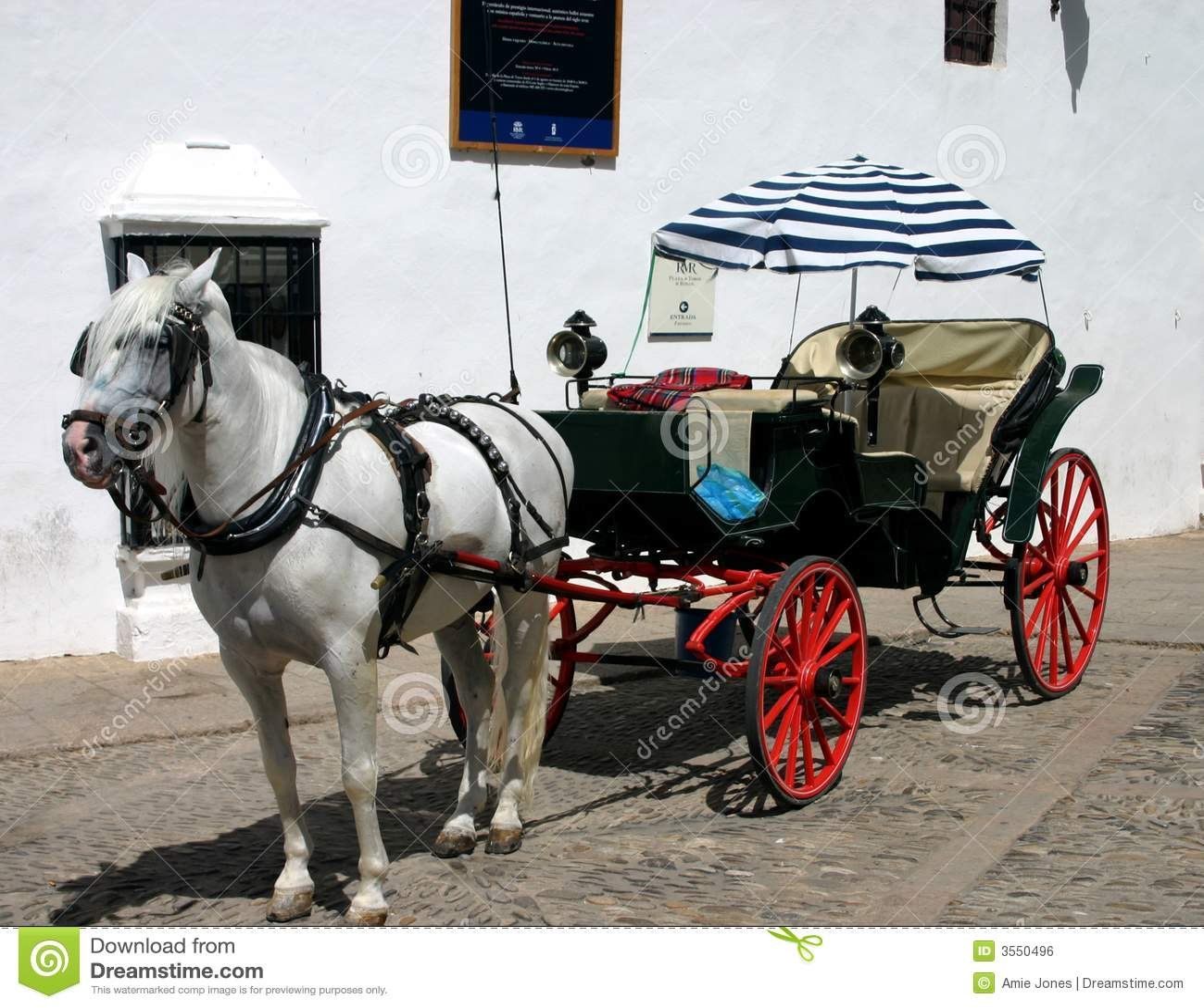 Cavallo e Buggy in Spagna