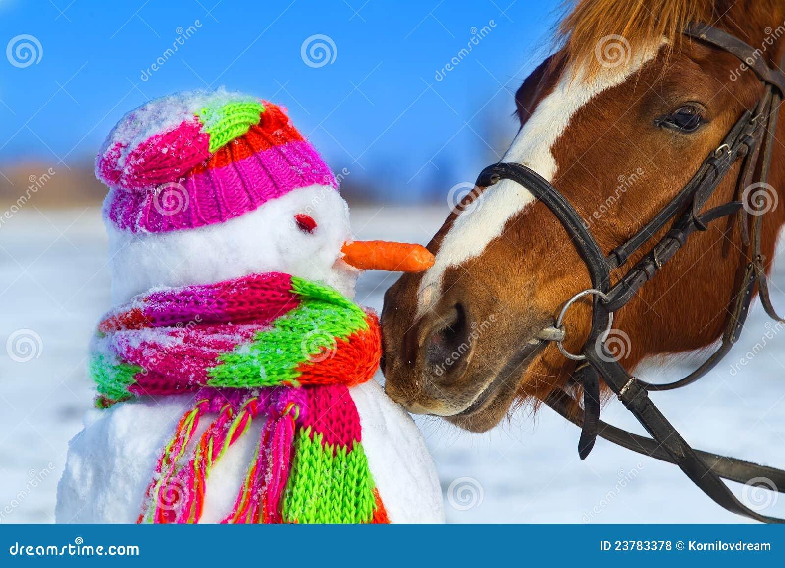 Cavallo e pupazzo di neve