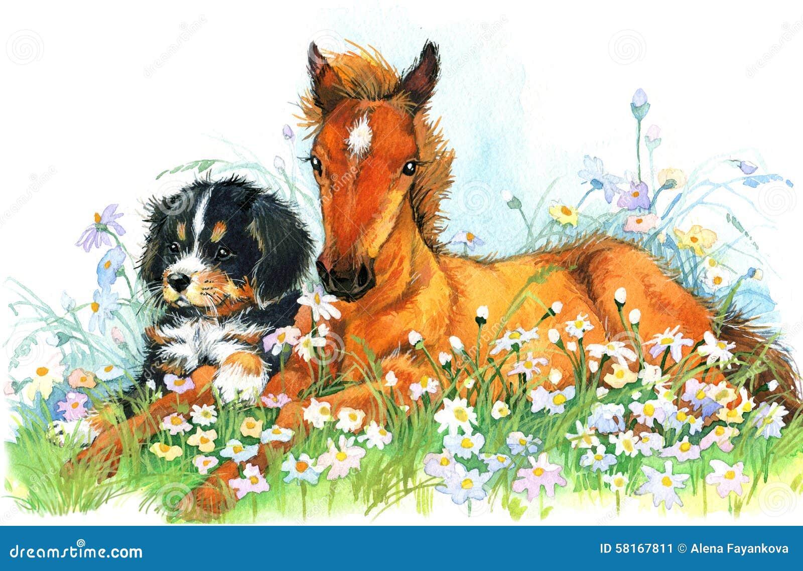 Cavallo ed e cucciolo Fondo con il fiore Illustrazione