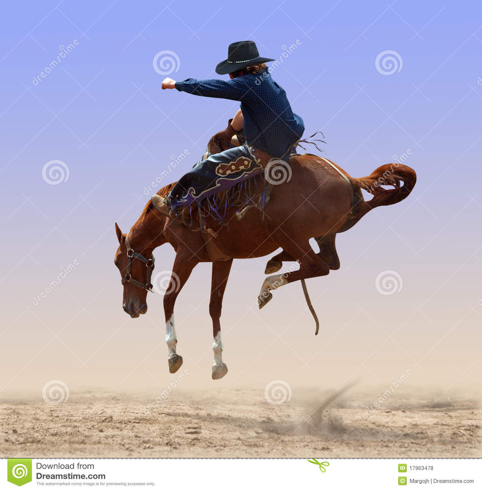 Rodeo A Cavallo.Cavallo Selvaggio Disperso Nell Aria Del Rodeo Fotografia