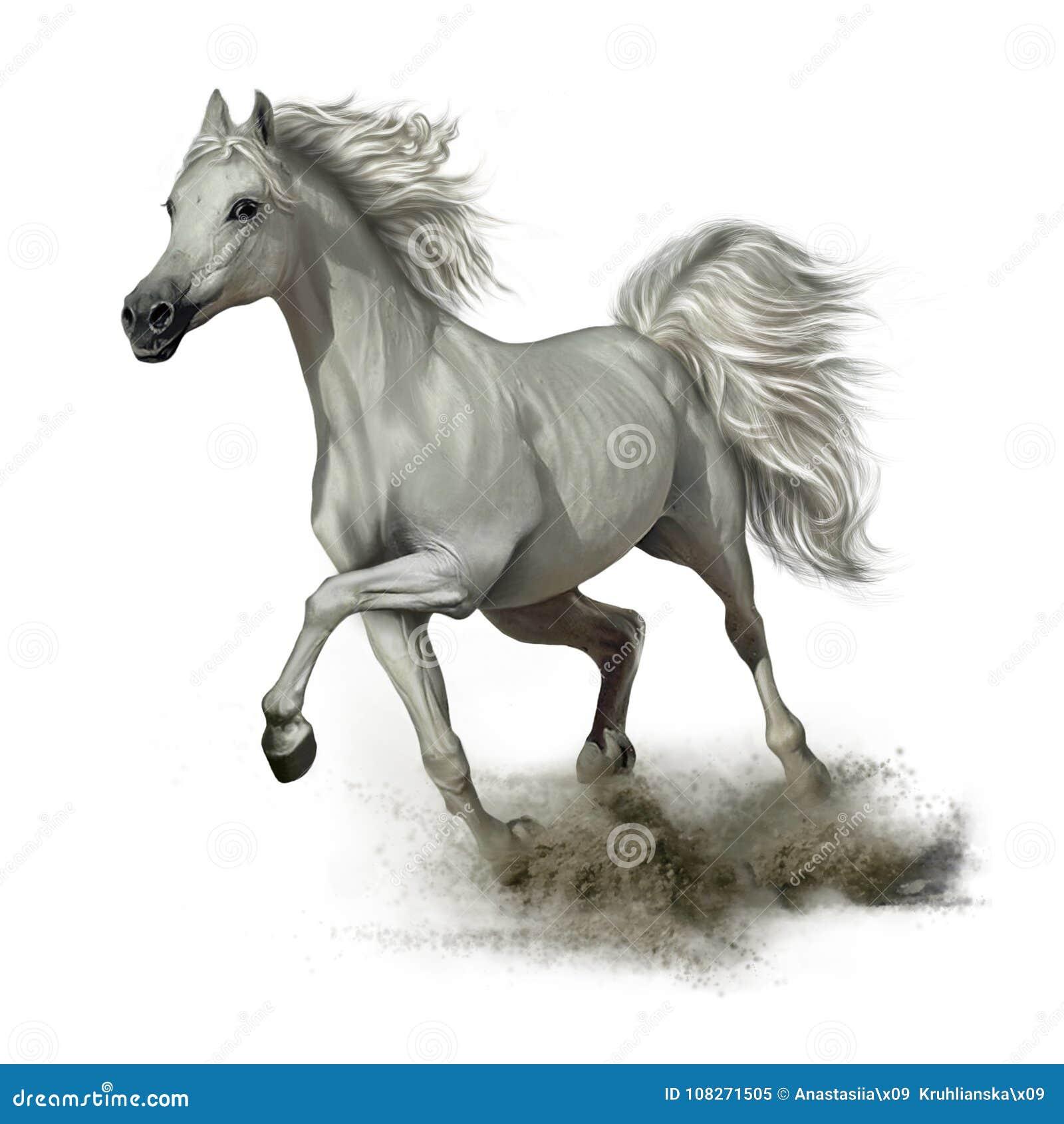 Cavalo branco Running