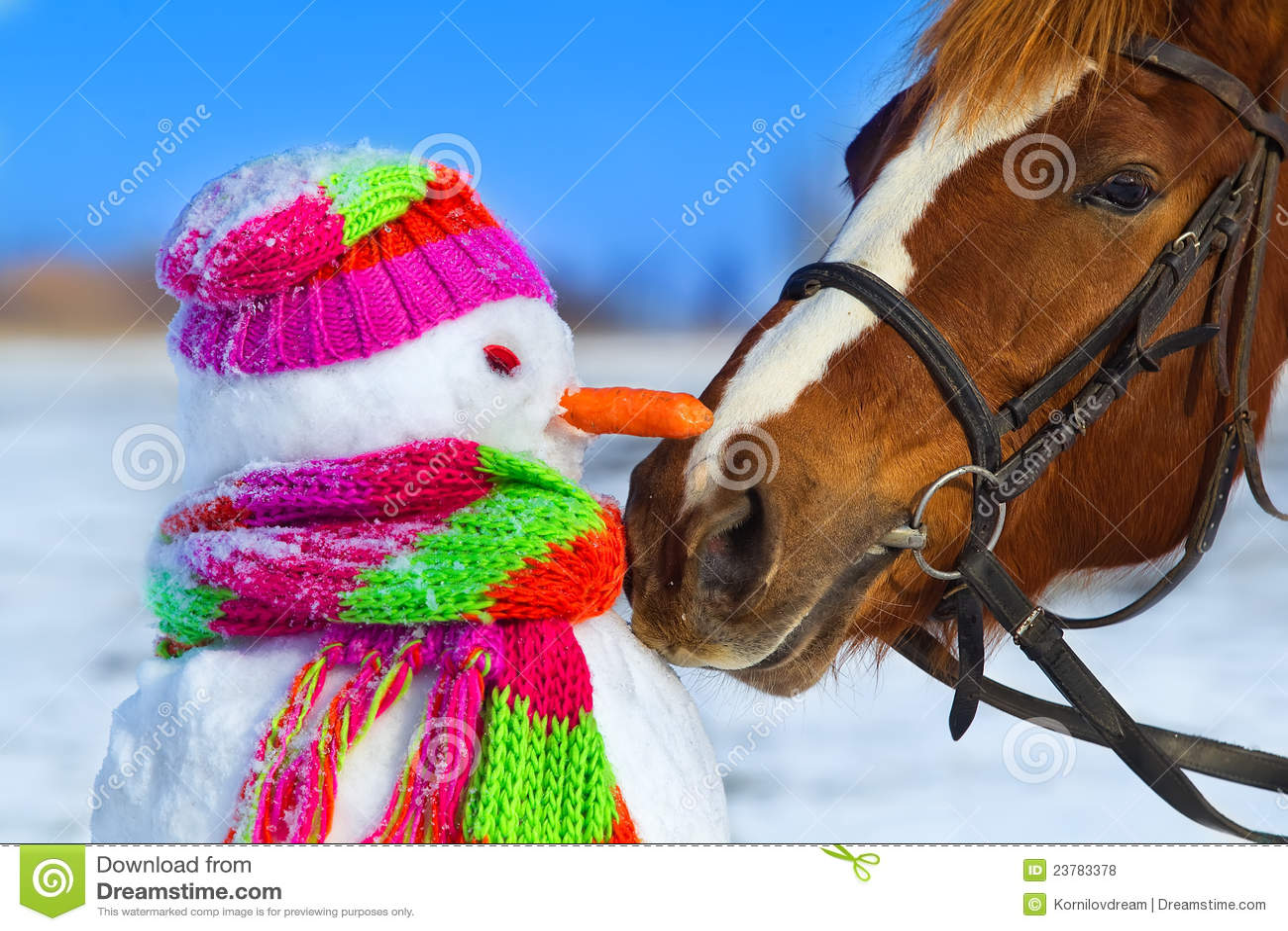 Cavalo e boneco de neve