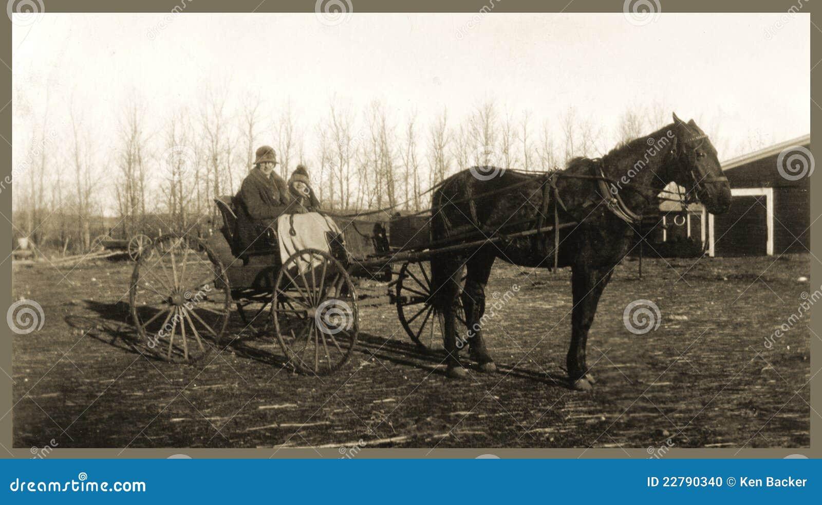 Cavalo e buggy antigos dos povos da fotografia