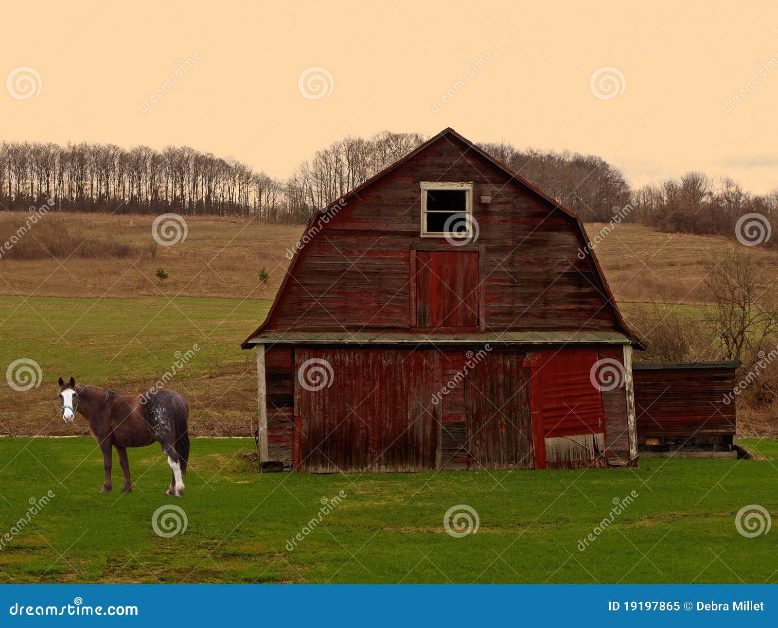 Cavalo e celeiro no nascer do sol