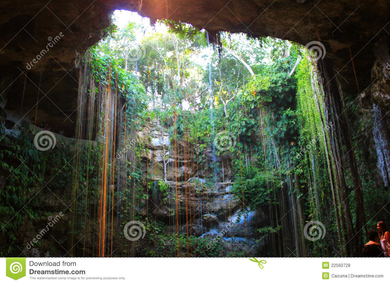 Cave Entrance Royalty Free Stock Photos Image 22560728