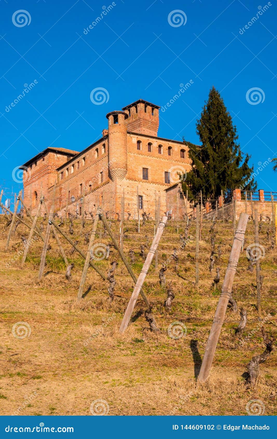 Cavour Castle