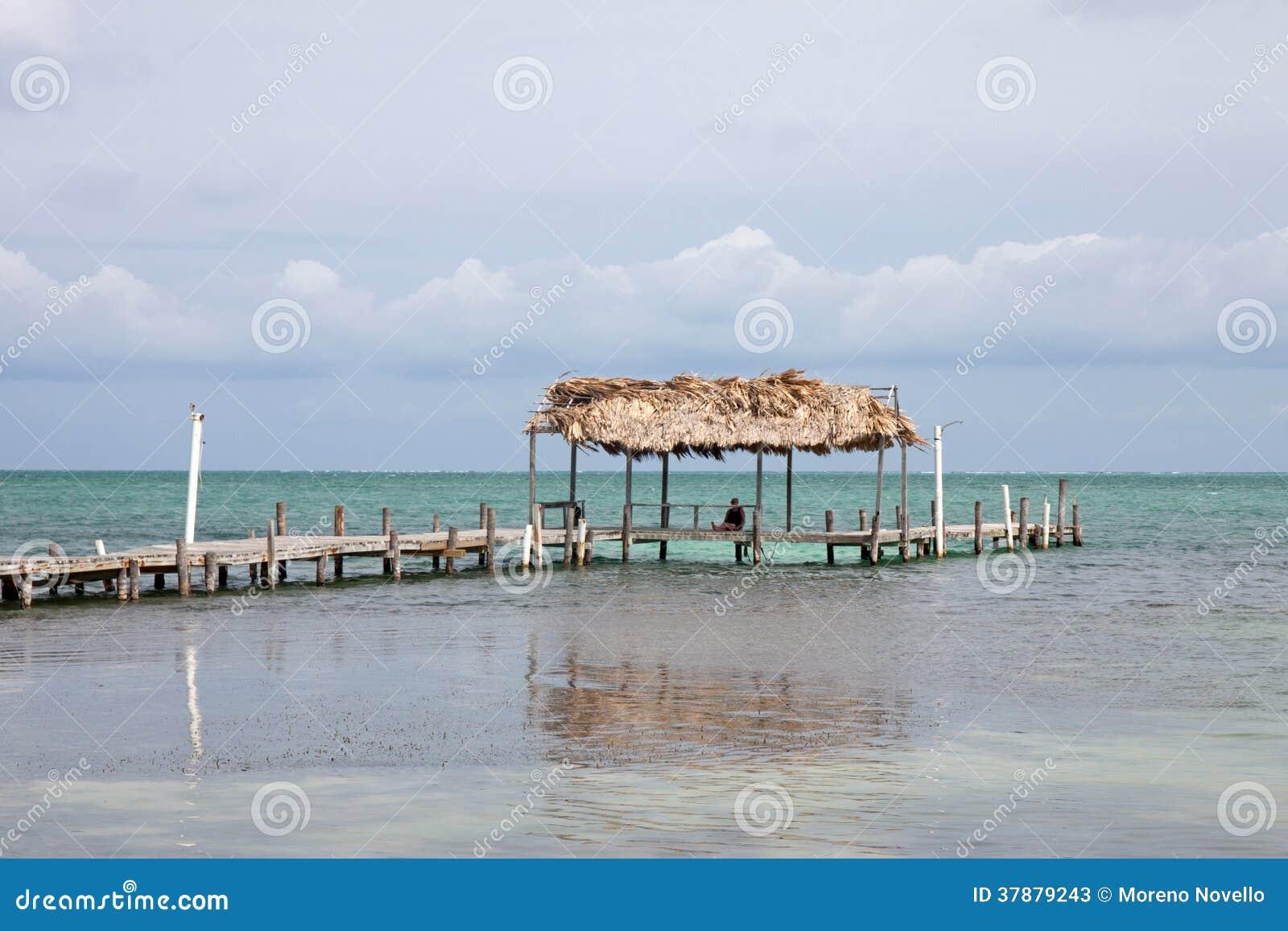 Cayebreeuwijzer, Belize