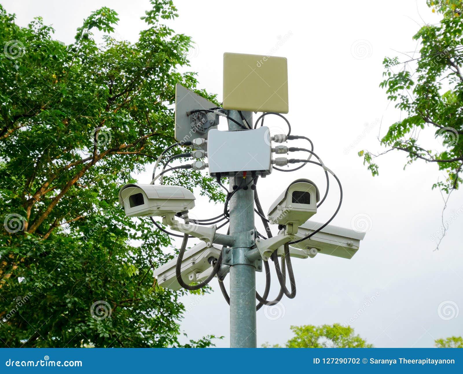 CCTV kamery w parku