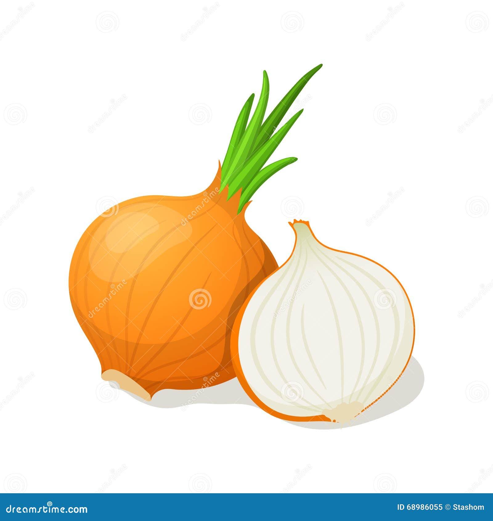 Cebolla en blanco