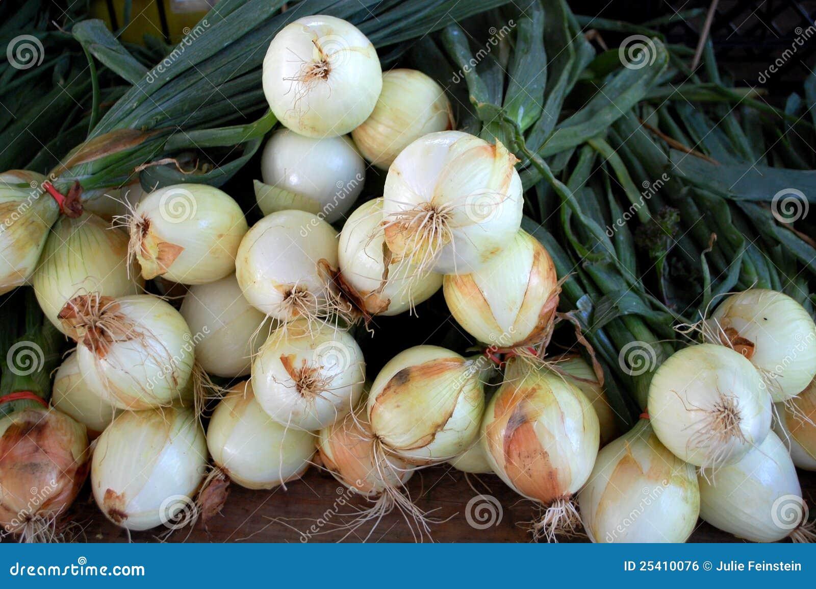 Cebollas del resorte imagen de archivo libre de regal as for Cocinar huevos 7 days to die