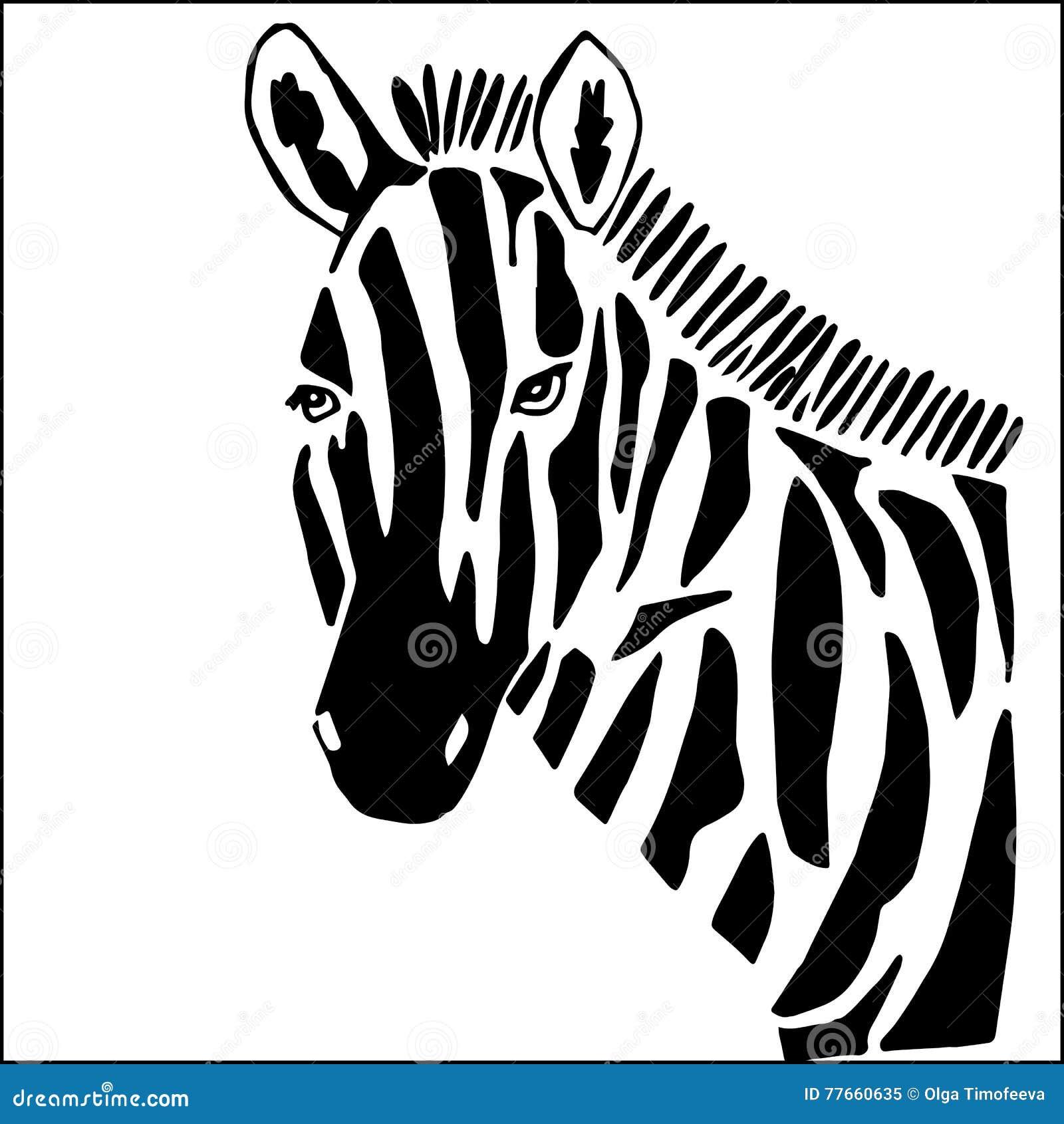 Cebra para colorear ilustración del vector. Ilustración de modelo ...