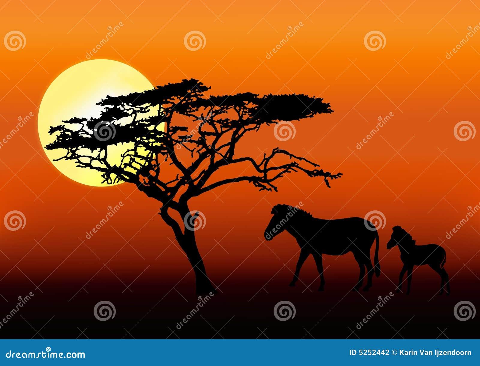 Cebra y bebé en puesta del sol