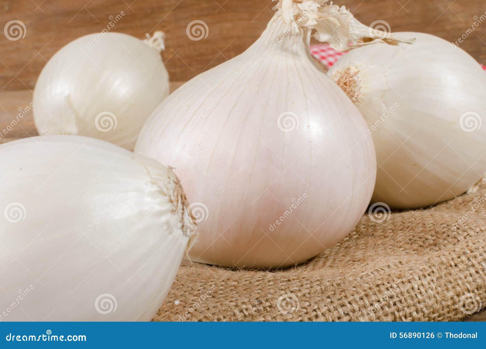 Cebula białe
