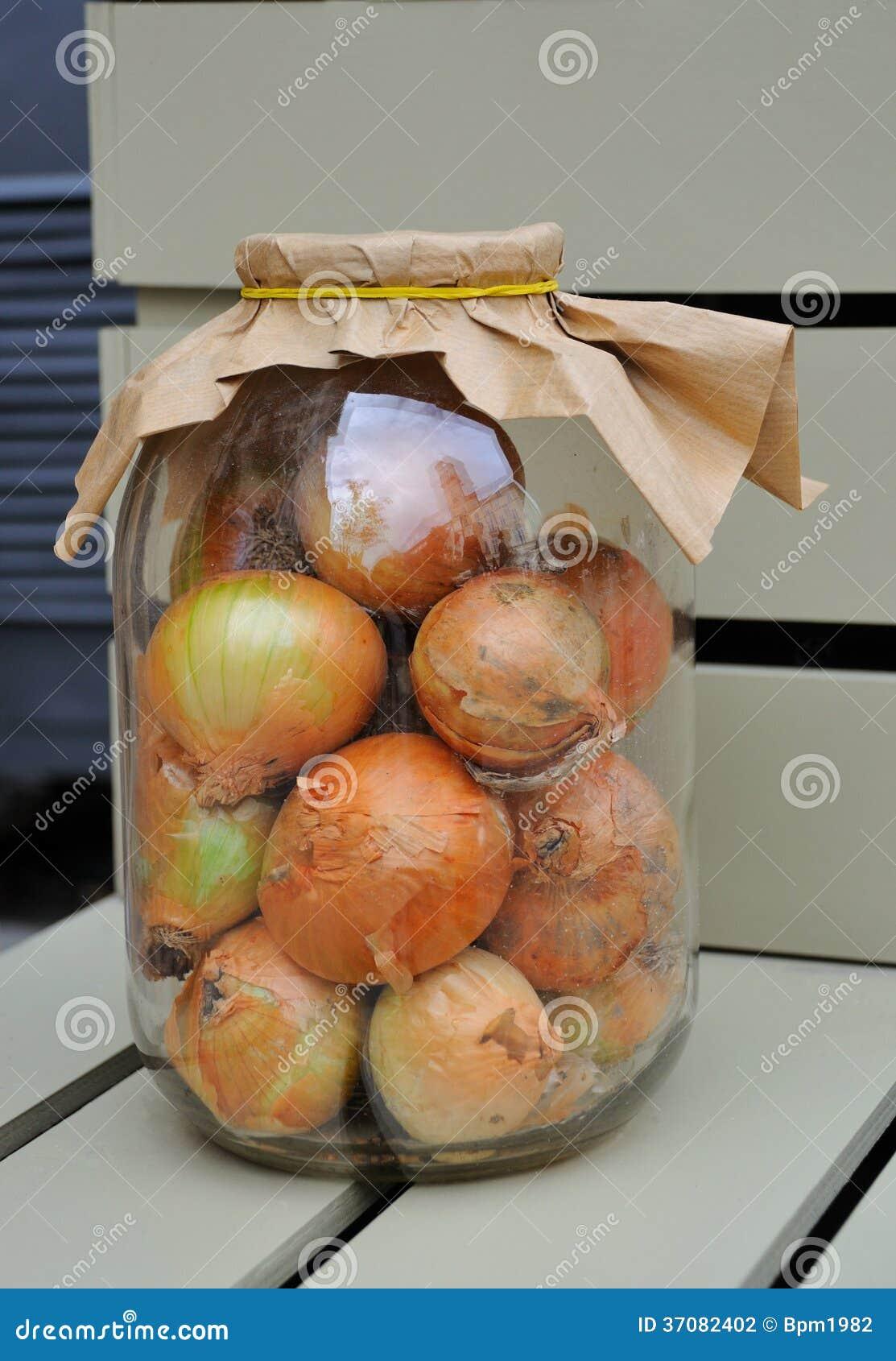 Download Cebule zdjęcie stock. Obraz złożonej z uprawa, roślina - 37082402