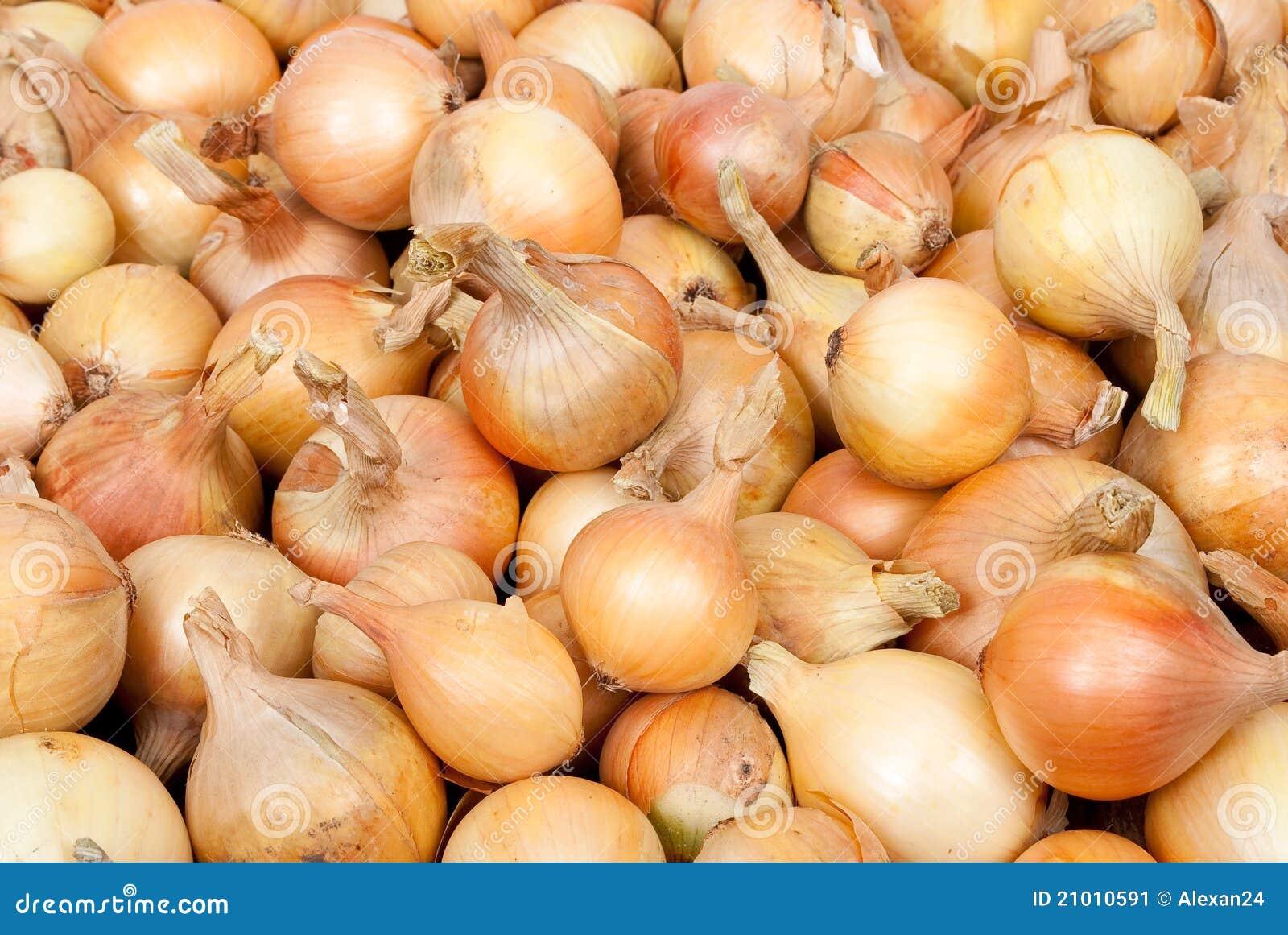 Cebuli dojrzały surowy