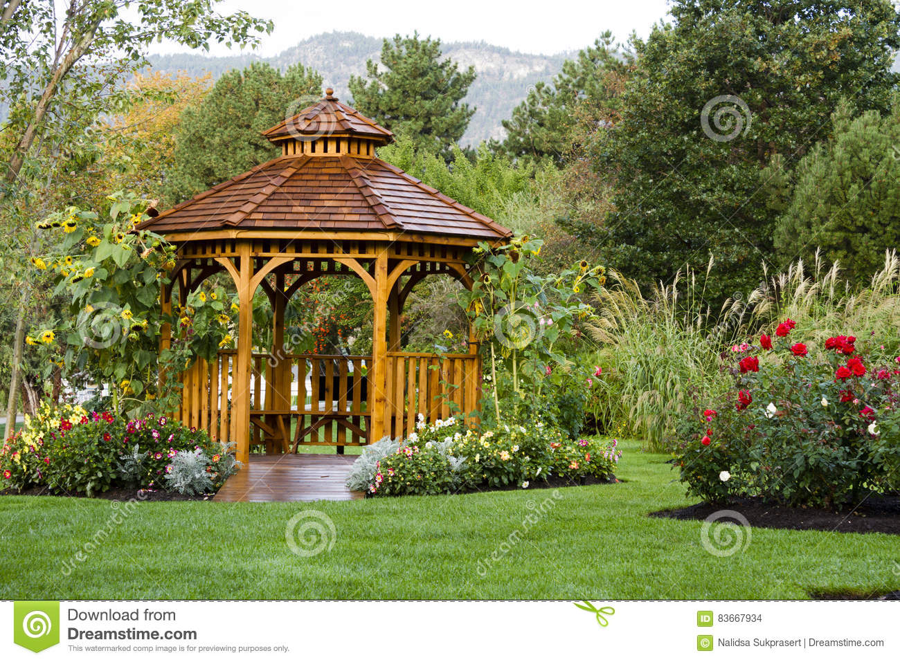 Cedar Gazebo Backyard Garden Park