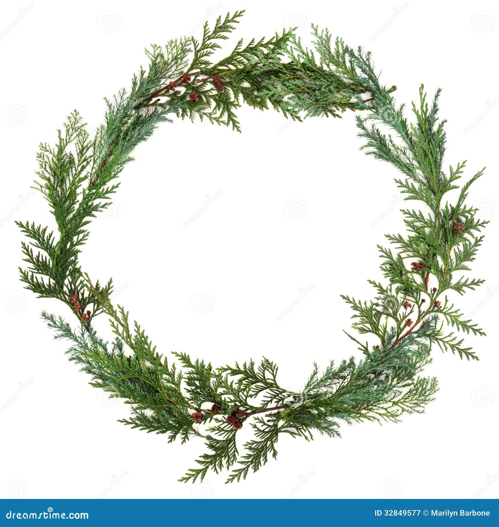 Cedar Leaf Wreath