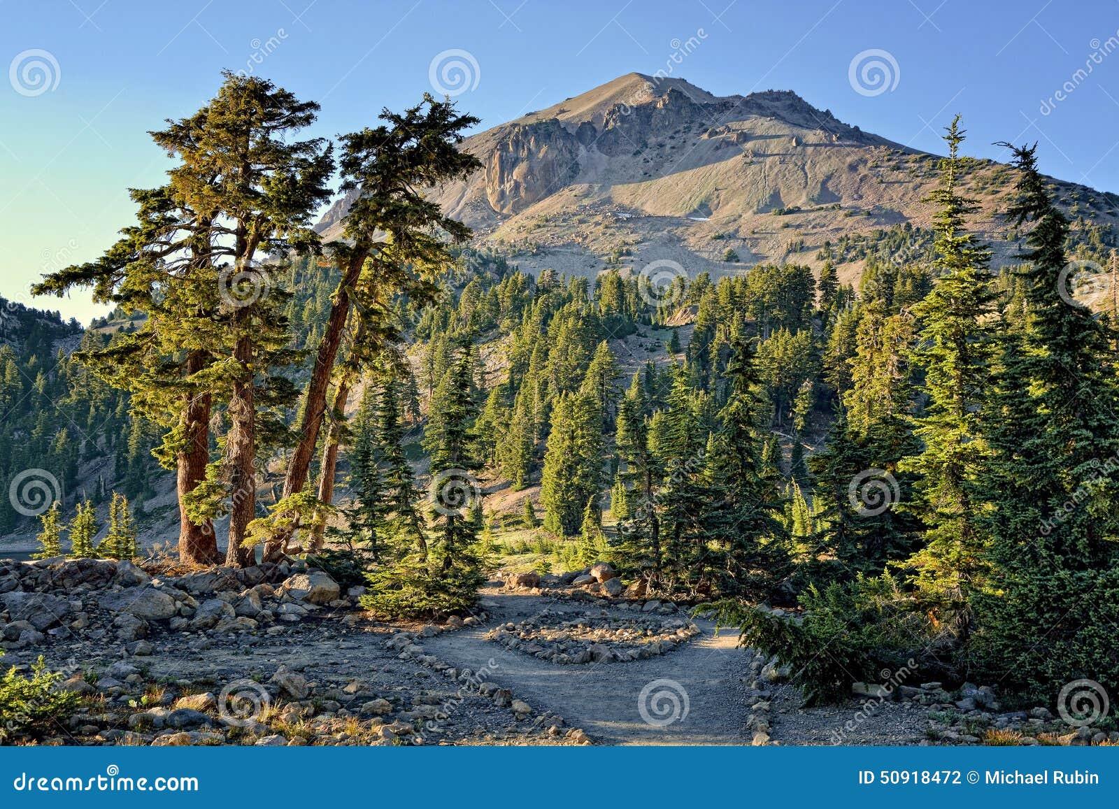 Cedar Trees- und Lassen-Spitze, vulkanischer Nationalpark Lassens