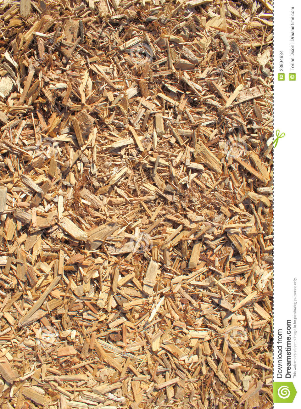 Cedar Wood Chips ~ Cedar wood chip background stock images image