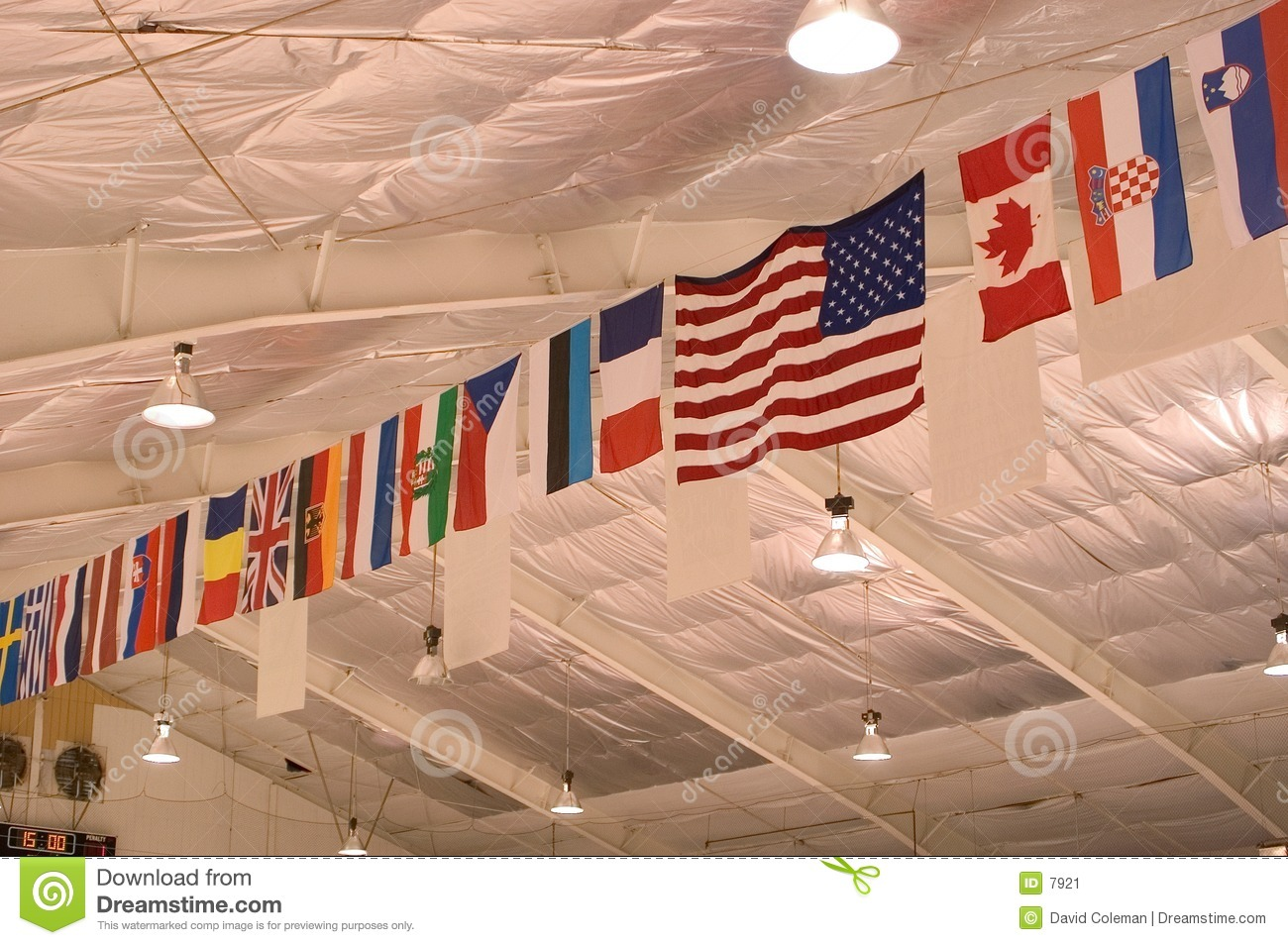 Ceiling flags