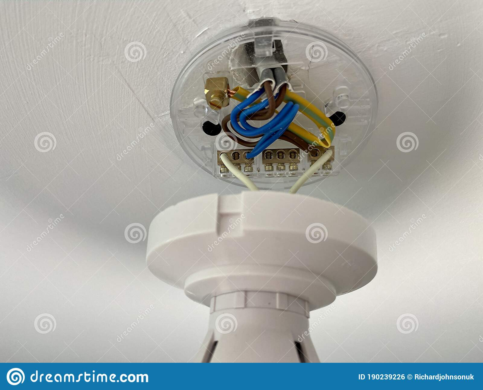 Ceiling Light Wiring Terminal Block And Blue Brown Cable Stock Photo Image Of Bulb Repair 190239226