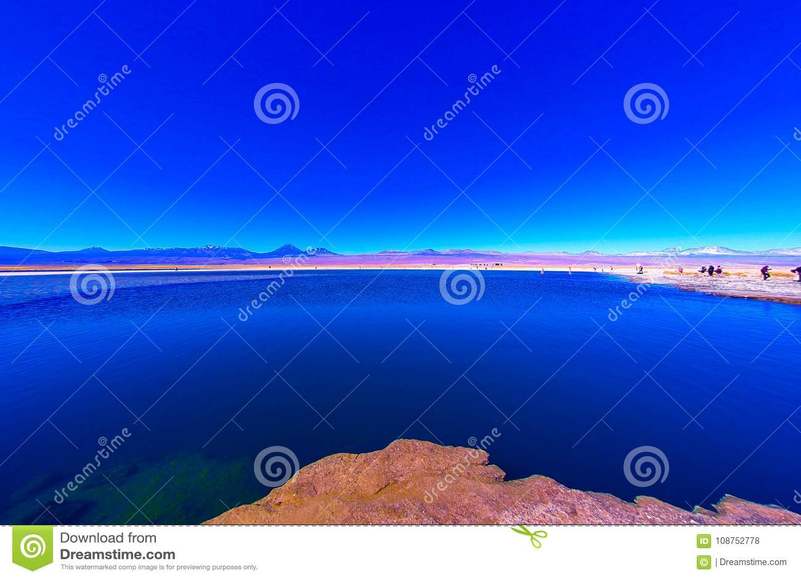 CEJAR LAGOON. Laguna Cejar. Cejar Lake.