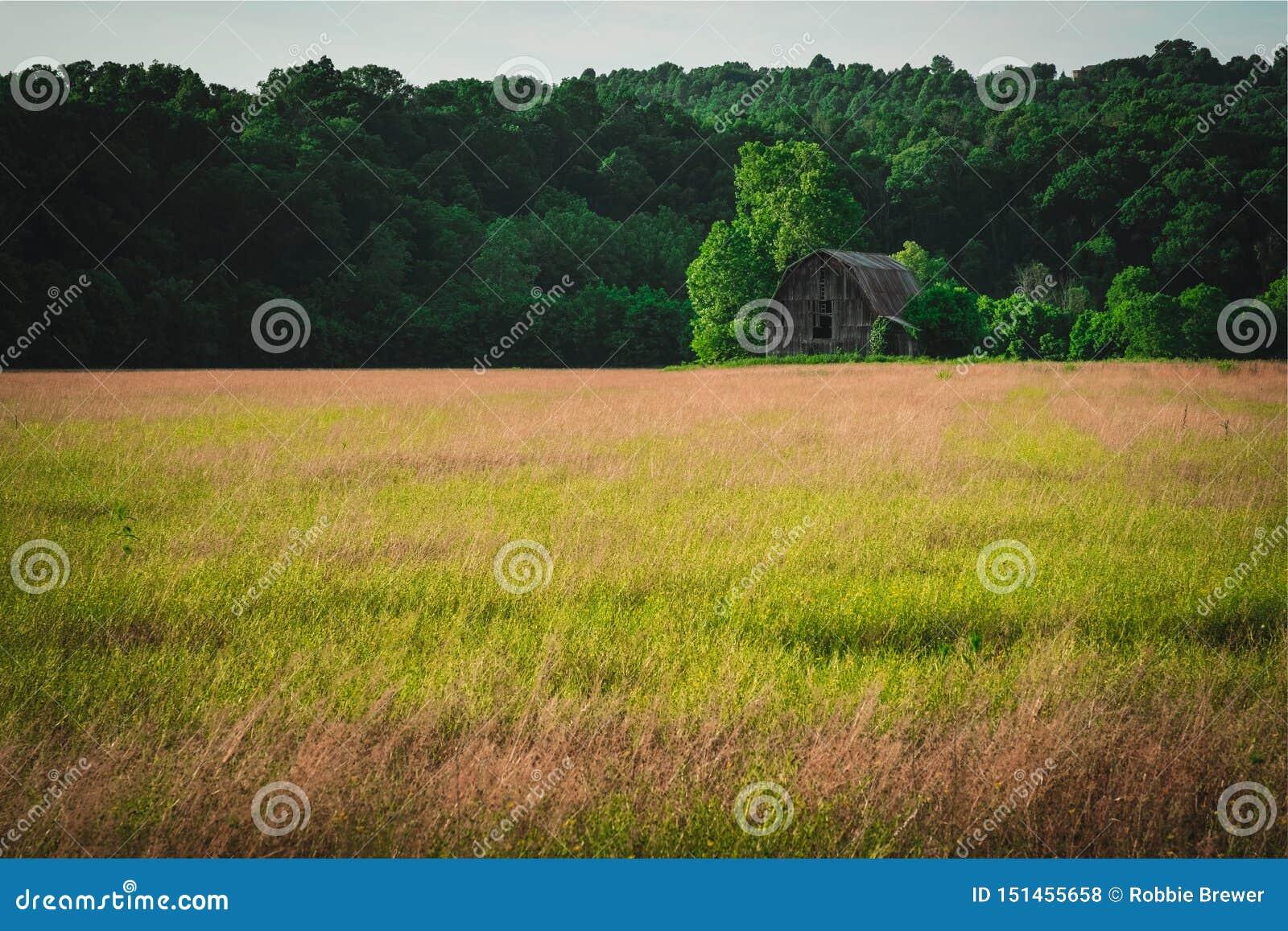 Celeiro abandonado velho no campo