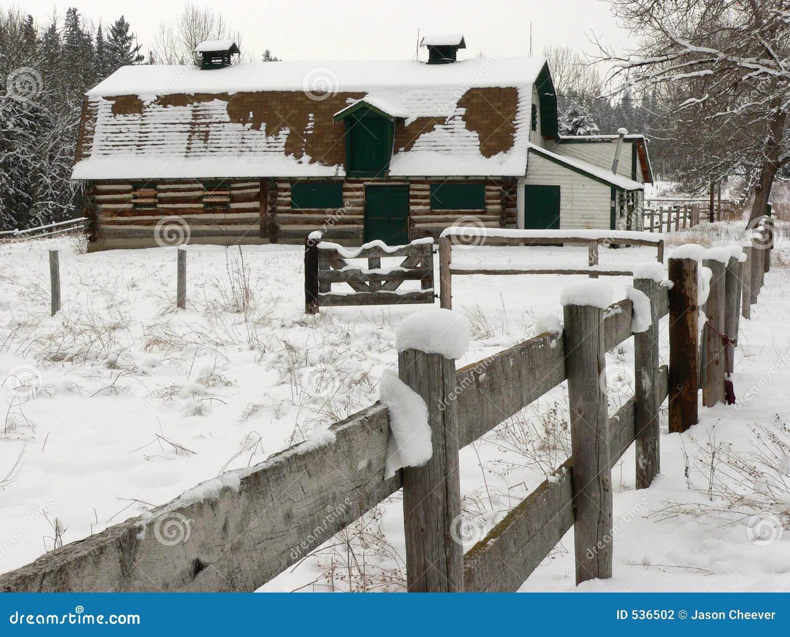 Celeiro velho na neve