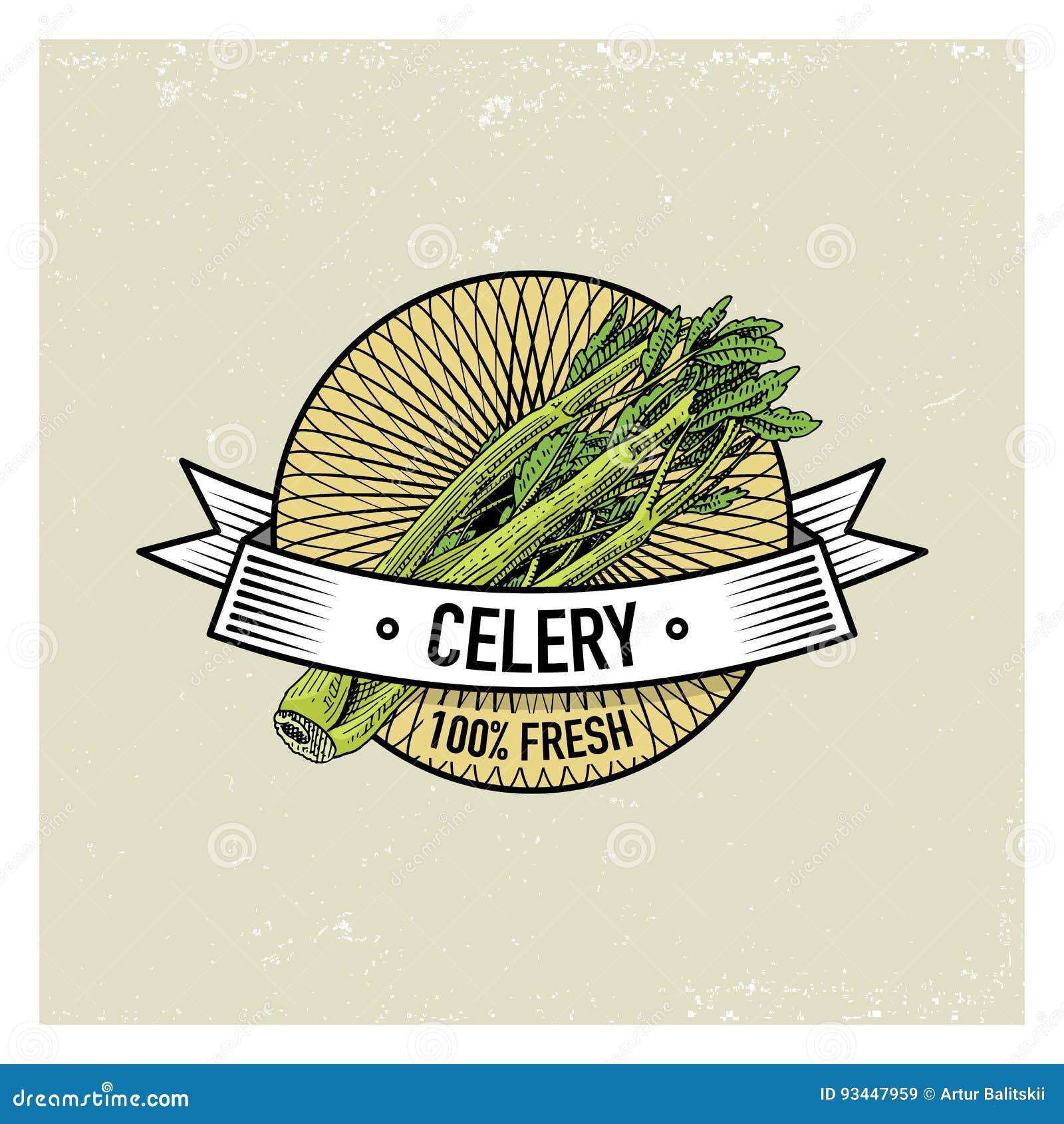 celery vintage set of labels, emblems or logo for vegeterian food